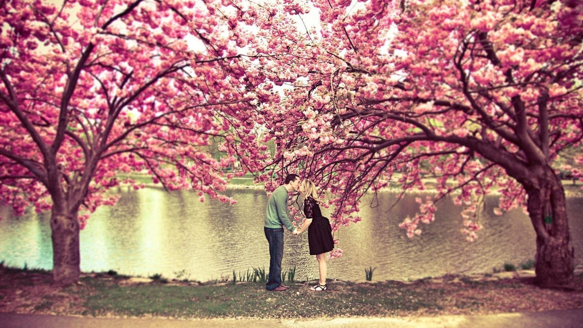 Res: 1920x1080,  Spring is Here desktop PC and Mac wallpaper