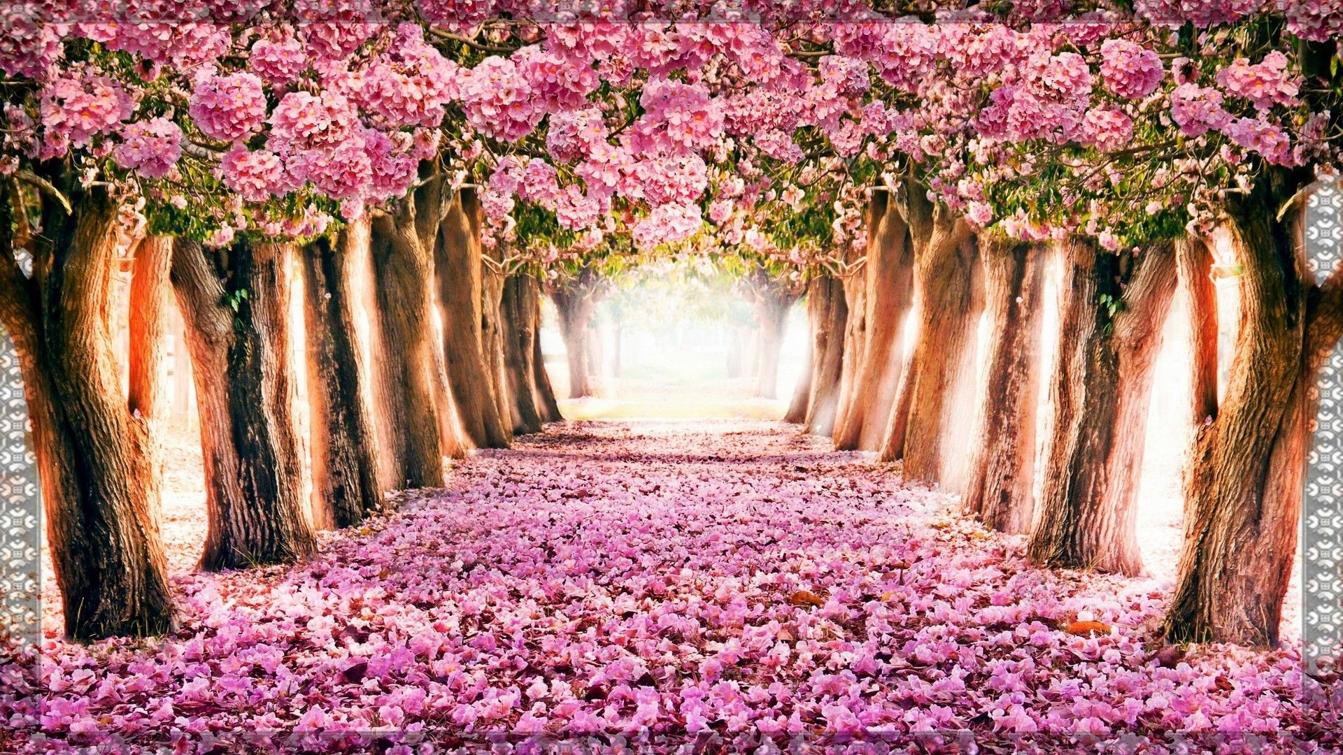 Res: 1920x1080, Hello Spring Wallpaper   Best HD Wallpapers
