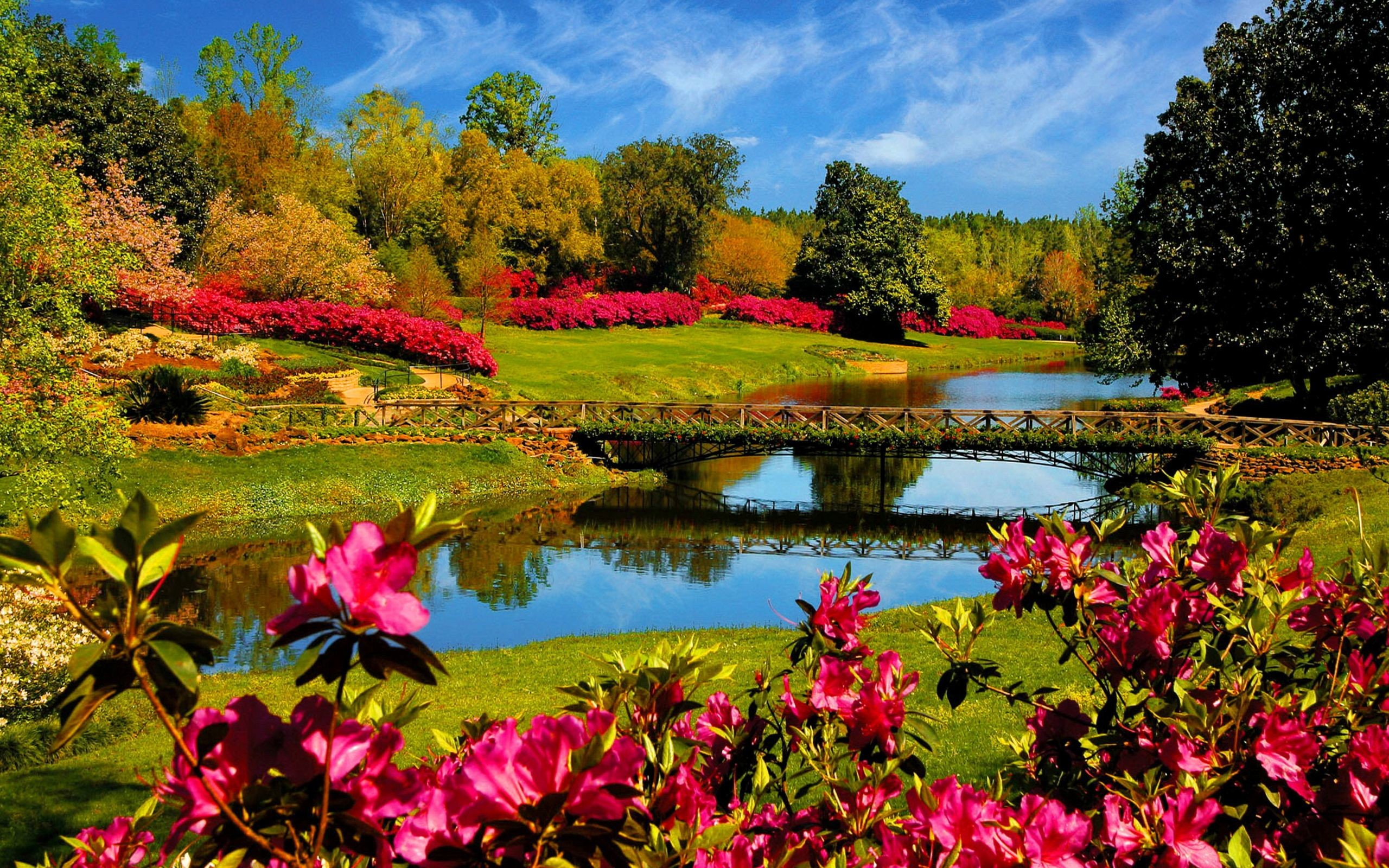 Res: 2560x1600, Hd Wallpapers Nature Spring Background 1 HD Wallpapers