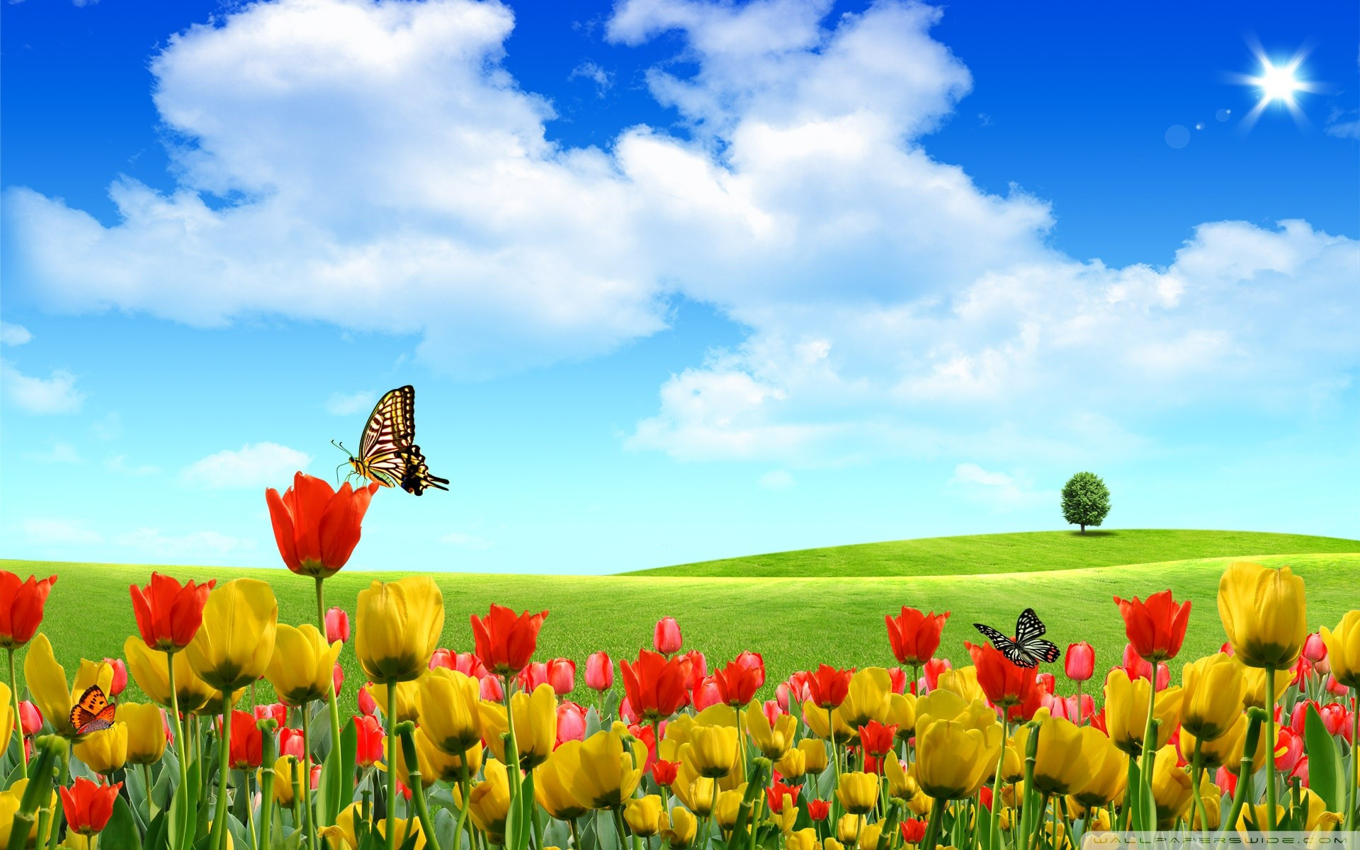 Res: 1920x1200, 25 Stunning Spring Wallpapers - HD Wallpapers