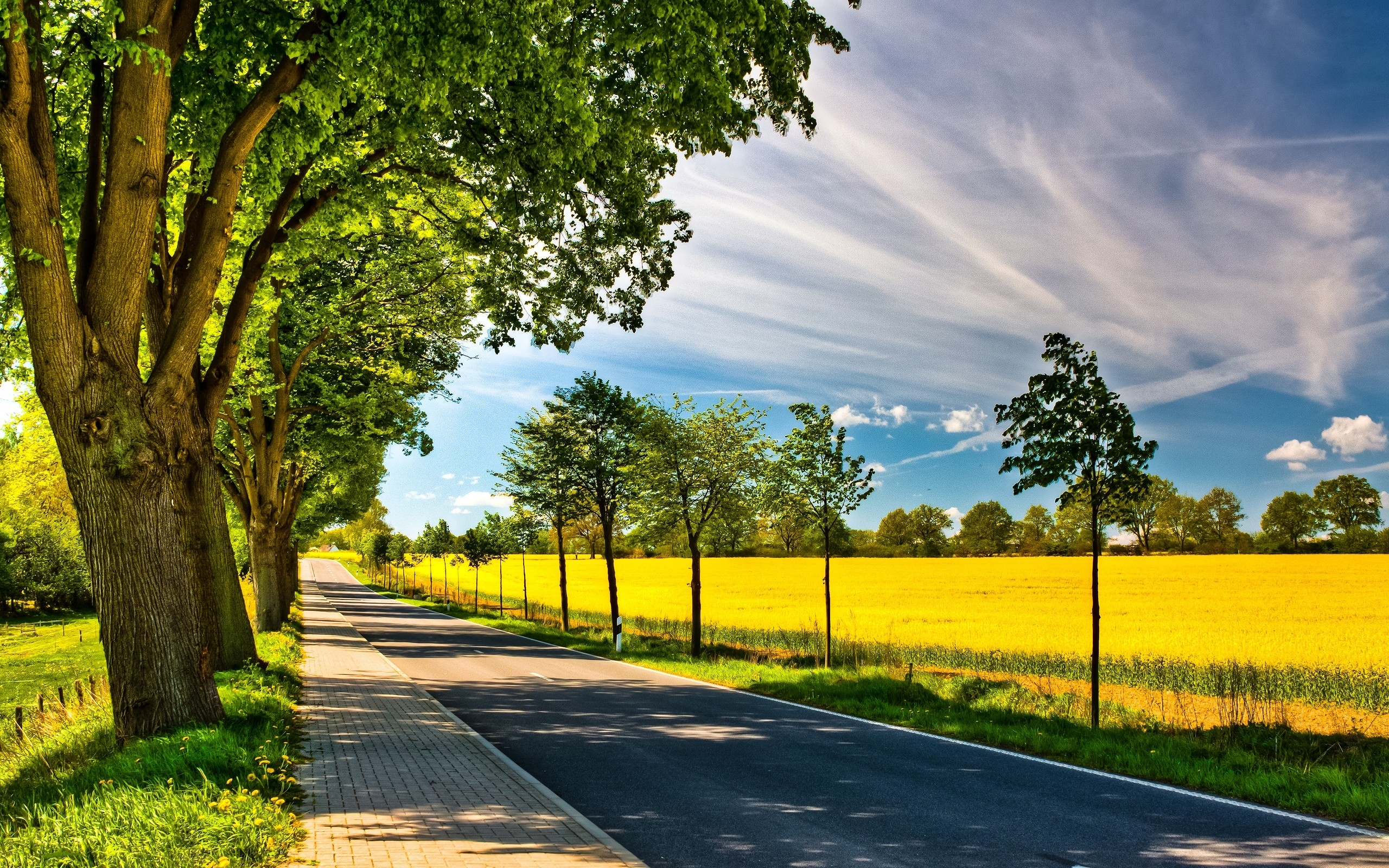 Res: 2560x1600, Image: Spring Road wallpapers and stock photos. Â«