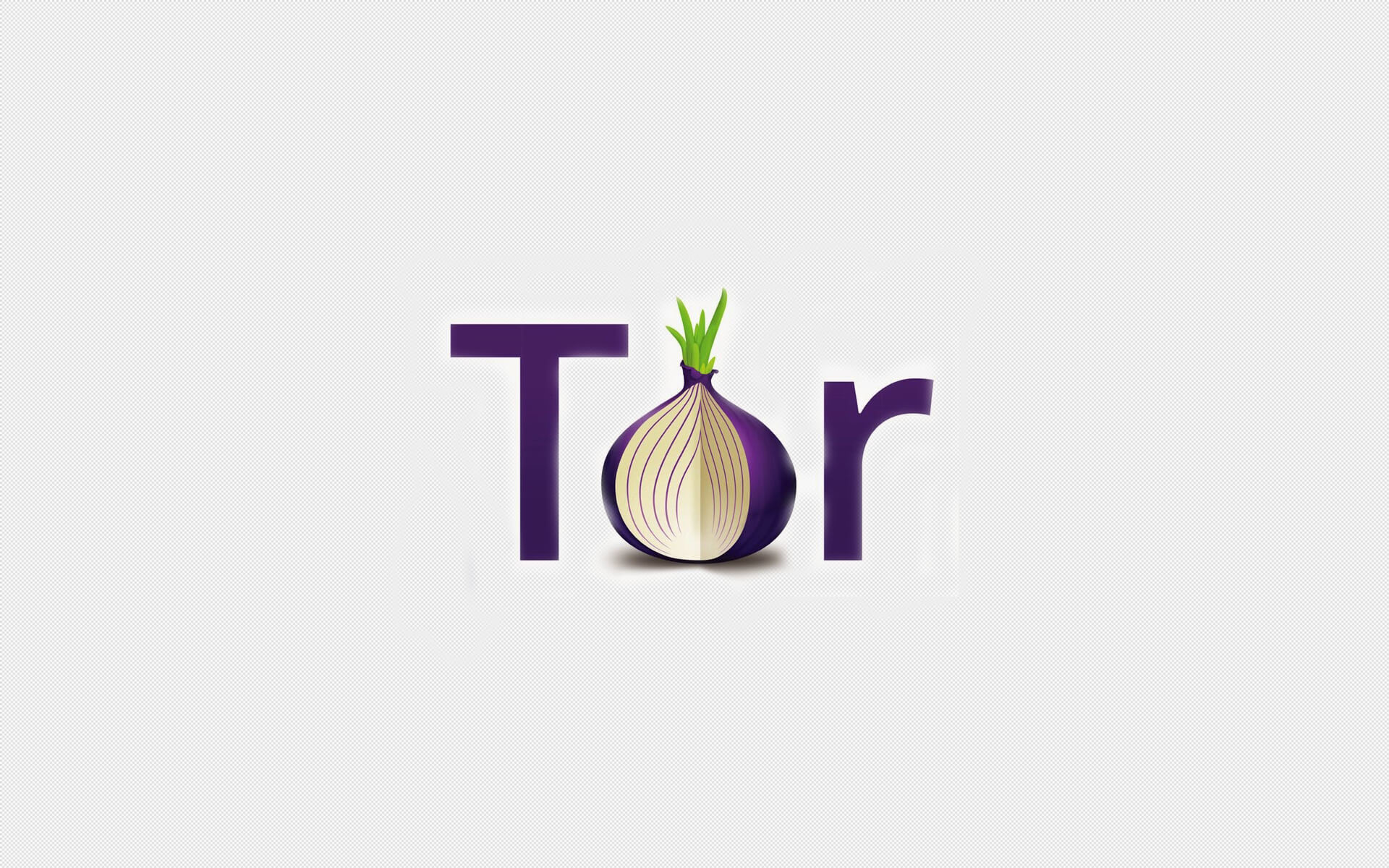 Res: 1920x1200, Tor developers have acknowledged security vulnerabilities in the platform,  but also started a major effort to fix them, by launching a program that  will pay ...