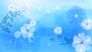 Blue Flower wallpapers