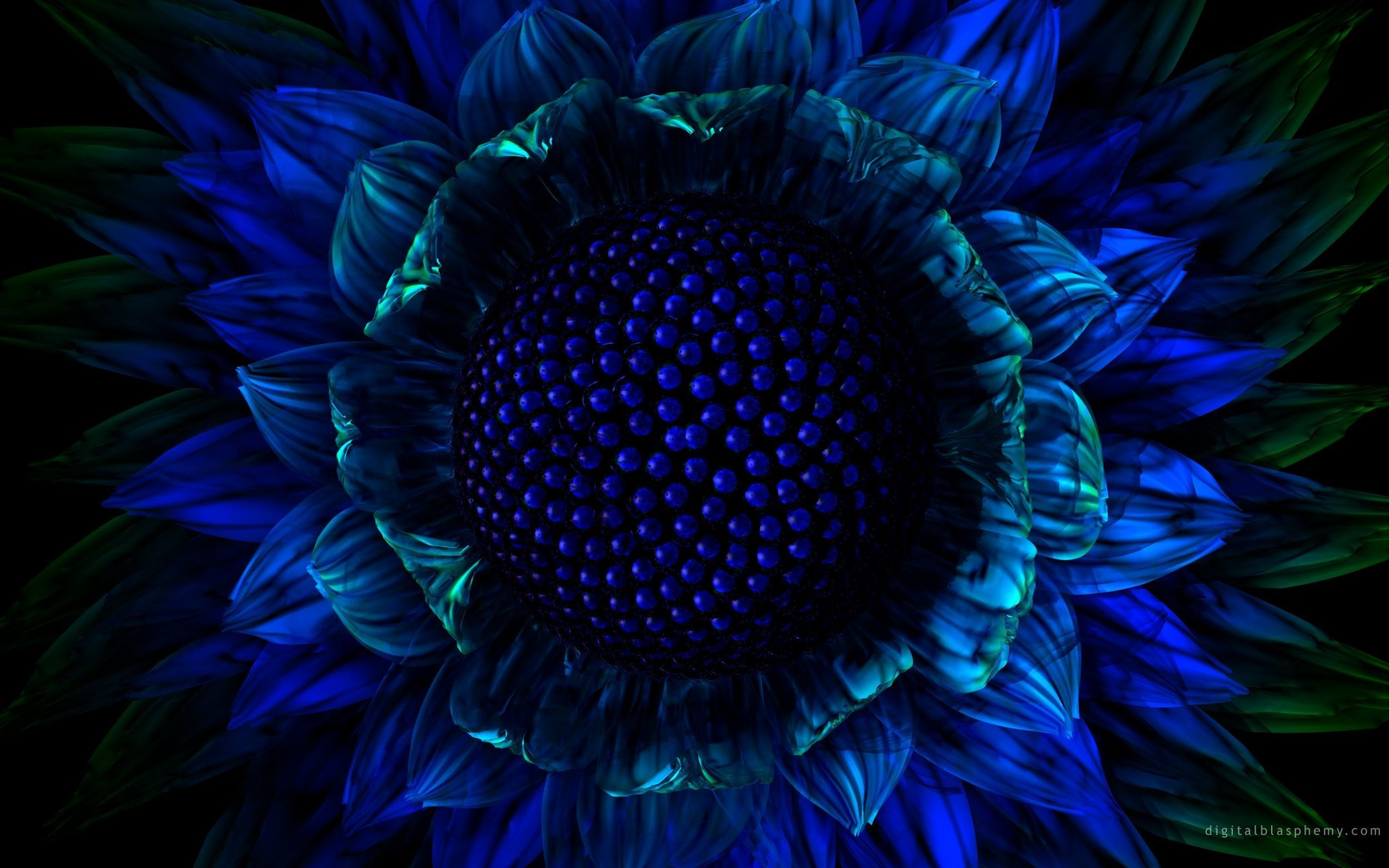 Res: 2500x1562, Desktop Backgrounds: Blue Flower, by Barb Flore, 2560x1600 px – download  for free