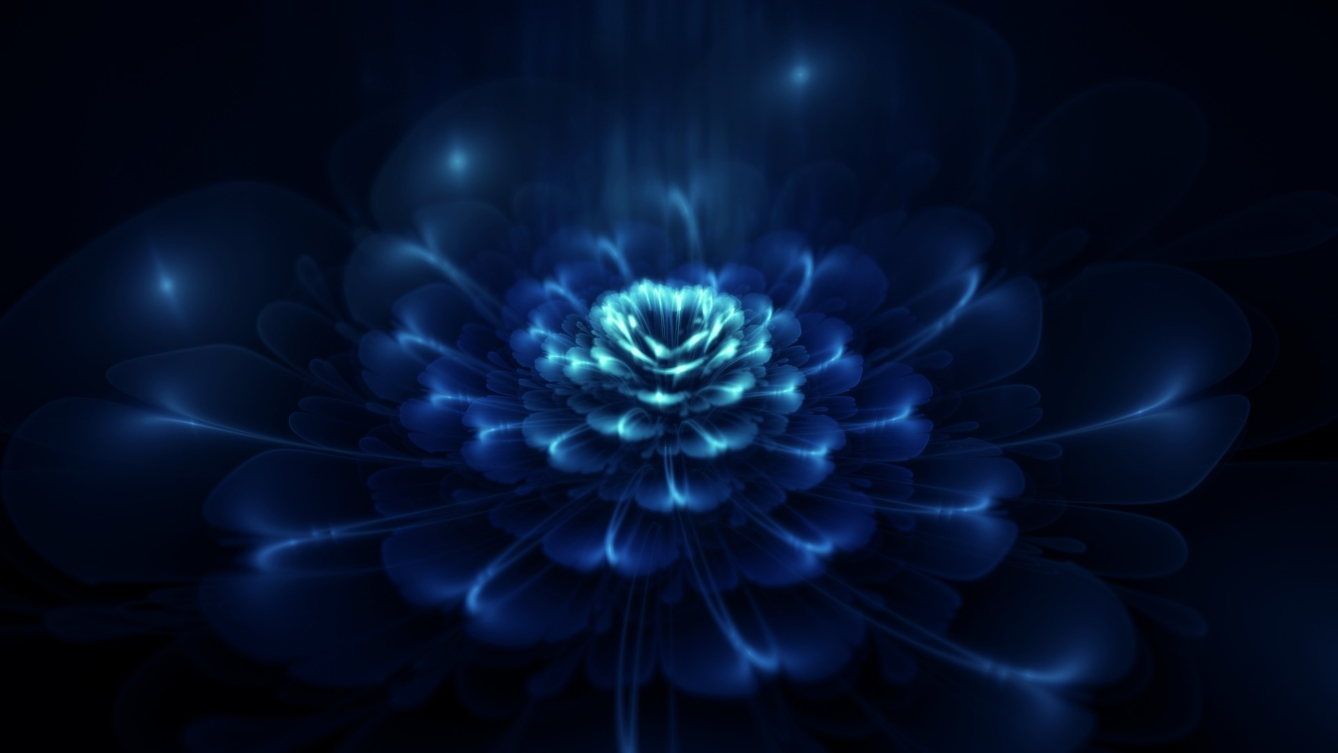 Res: 1920x1080, Title : dark blue flowers wallpaper – 1395249. Dimension : 1920 x 1080.  File Type : JPG/JPEG