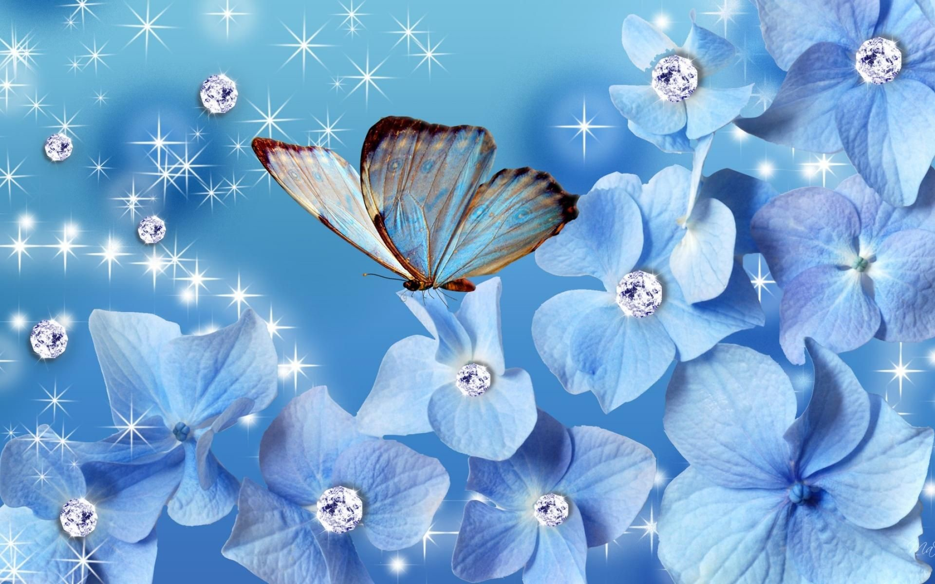 Res: 1920x1200, Butterfly Blue Flowers Nature Wallpaper