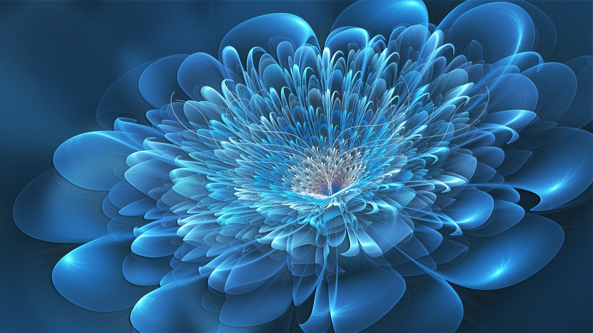 Res: 1920x1080, 10. blue-flower-wallpaper10-600x338