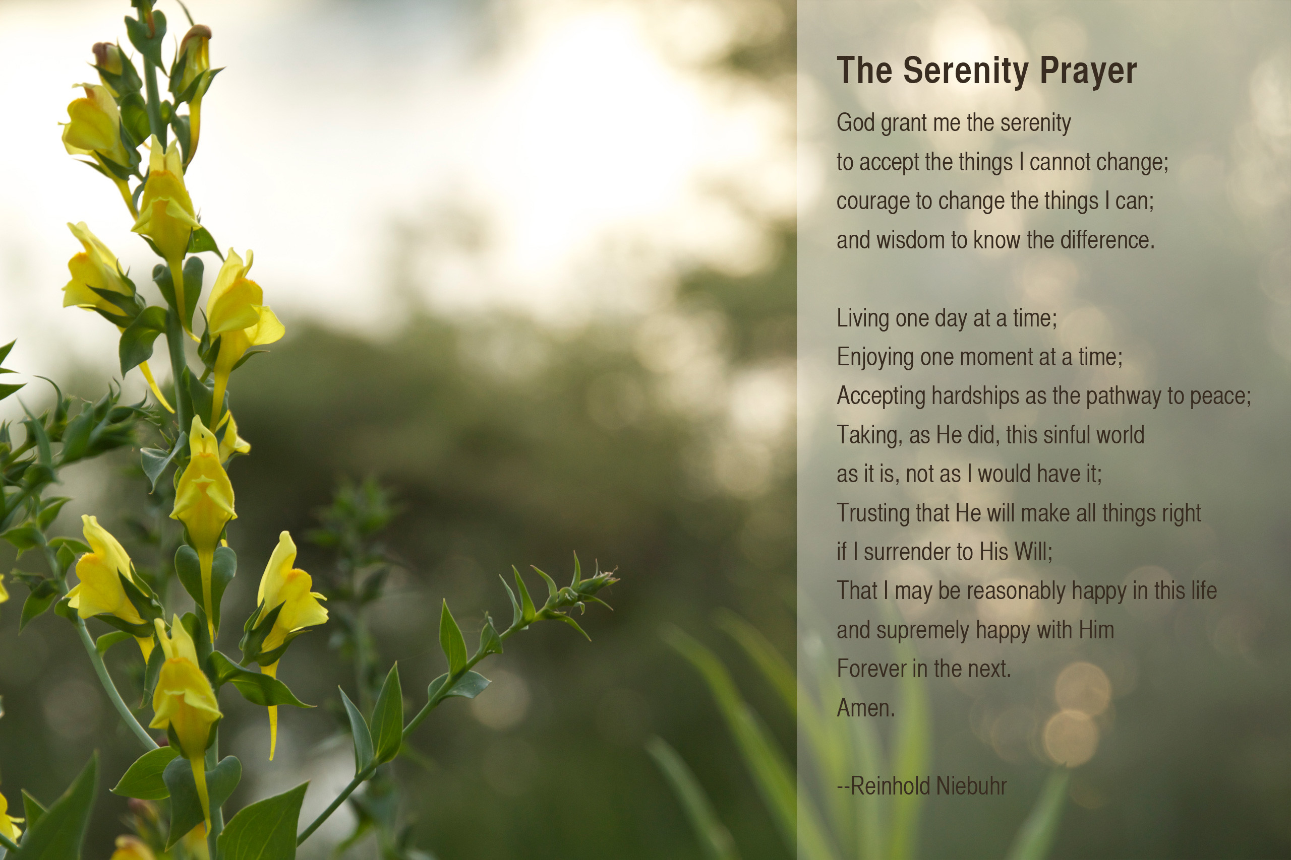Res: 2560x1707, Serenity Prayer Wallpapers, HD Quality Wallpapers For Free » ModaF.com