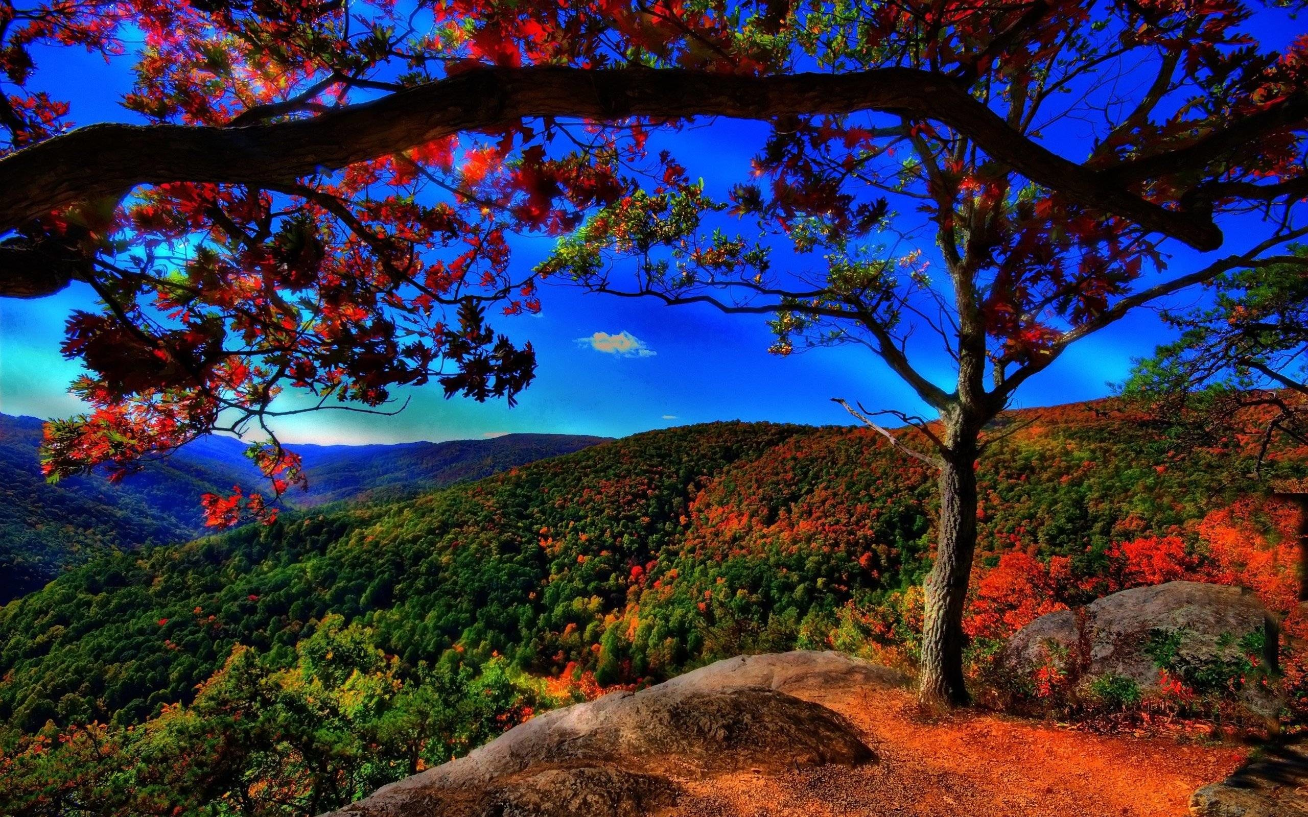 Res: 2560x1600, Beautiful Scenery Wallpapers - Full HD wallpaper search