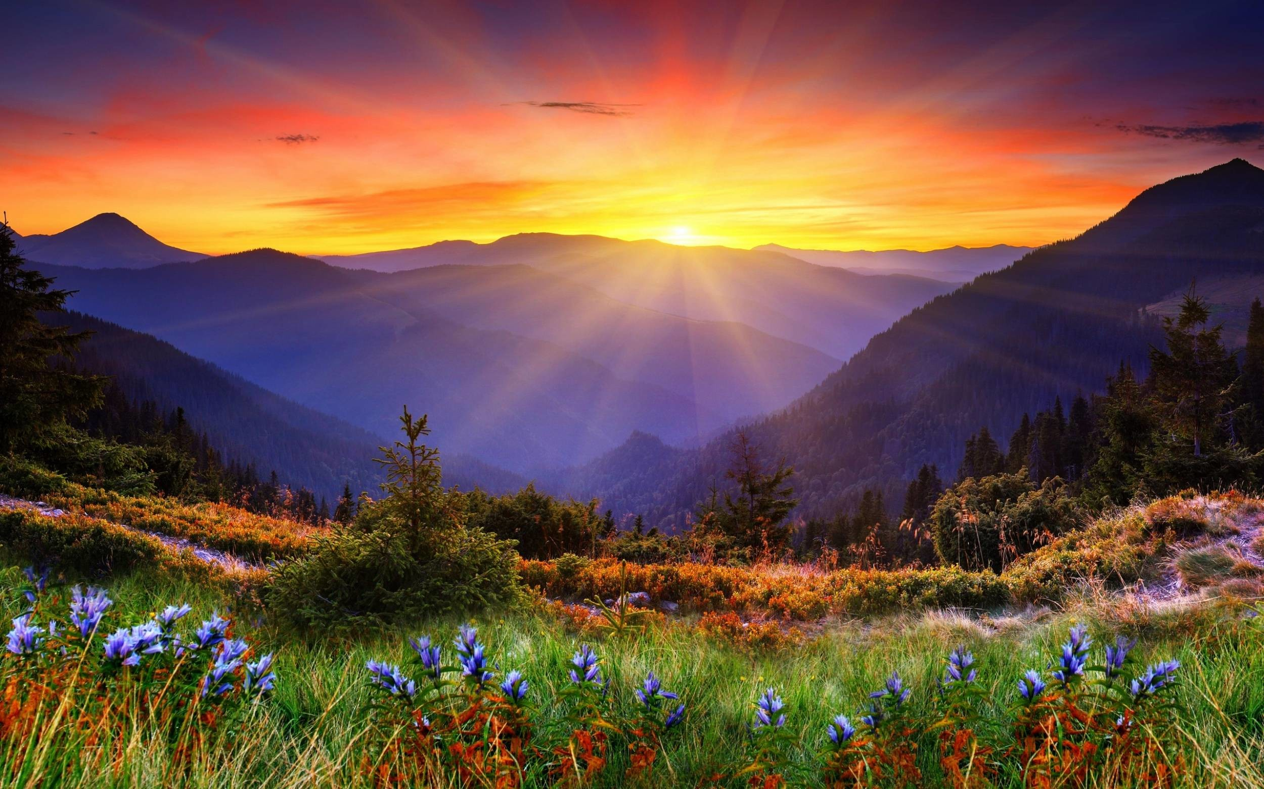 Res: 2500x1562, Wide HD Scenic Wallpaper – Wallpapers and Pictures HD for mobile and desktop