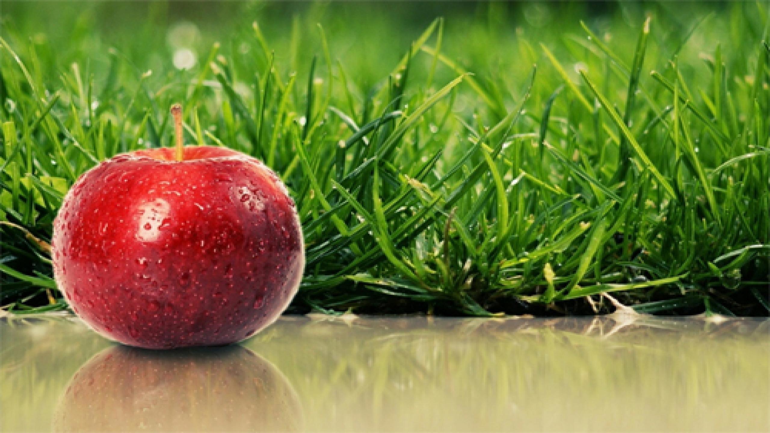 Res: 2560x1440, apple fruit wallpaper free download ...