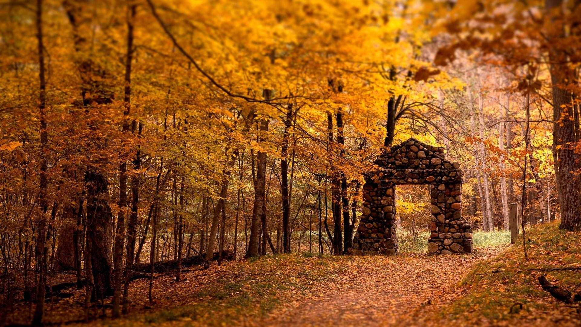 Res: 1920x1080,  Autumn day and maple desktop backgrounds wide wallpapers:1280x800,1440x900,1680x1050  -