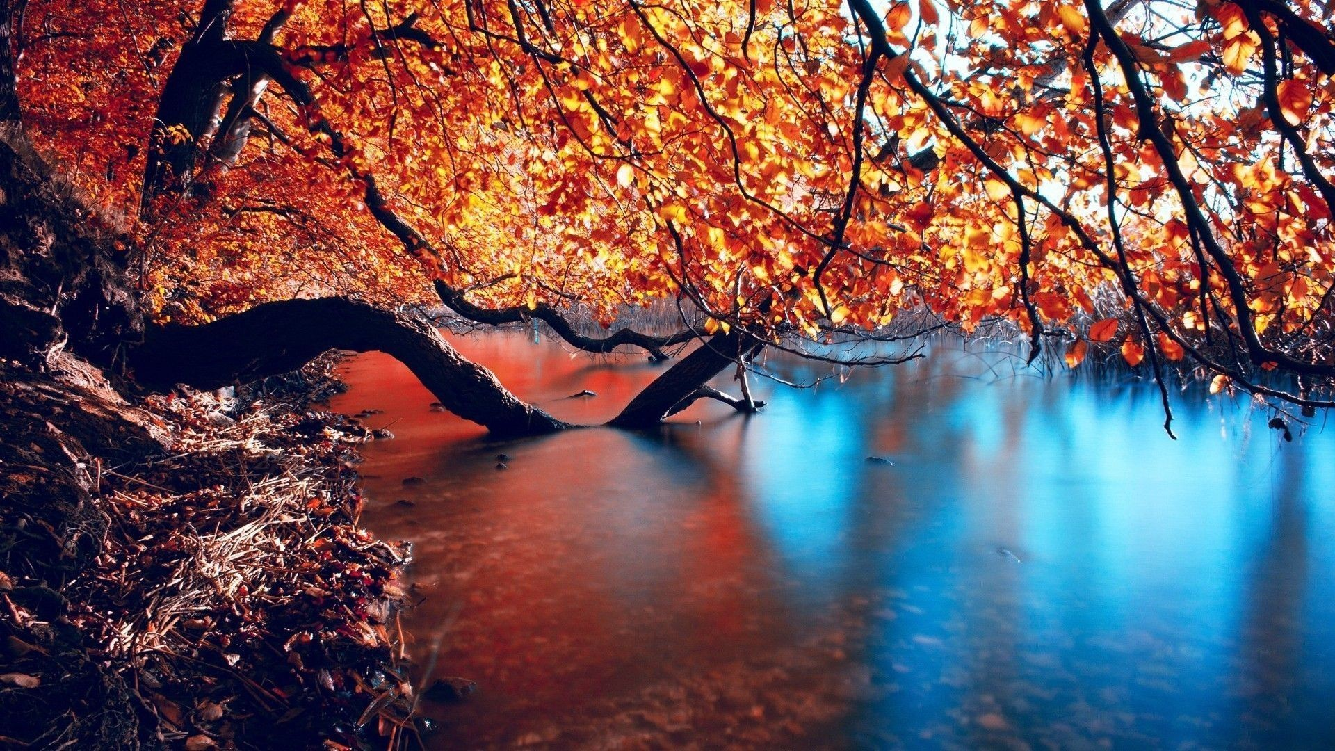 Res: 1920x1080, Wonderful Autumn HD Wallpapers