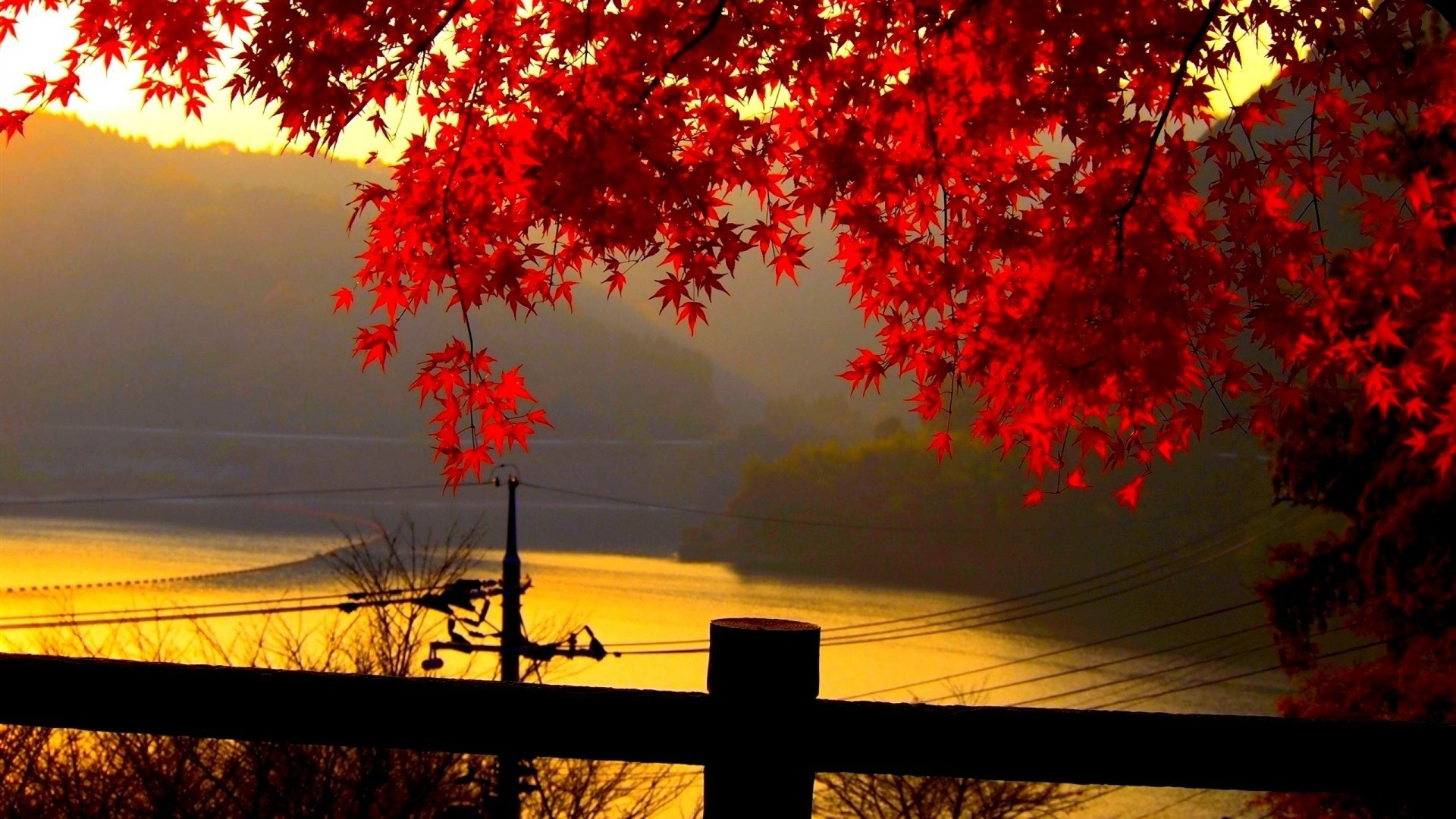 Res: 1920x1080, Click on the image to view full size and download. Download Best HD Wallpapers  Autumn .