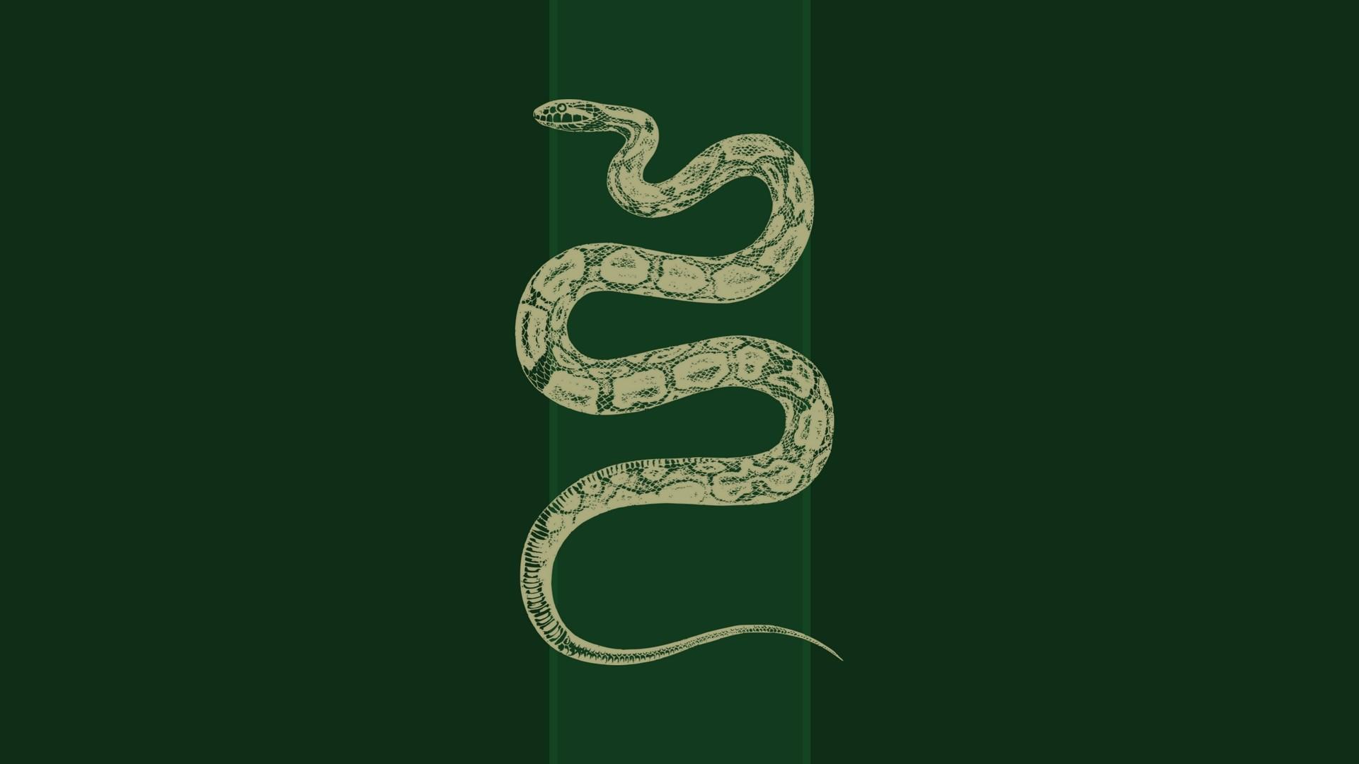 Res: 1920x1080, Slytherin by ElizaCatt Slytherin by ElizaCatt