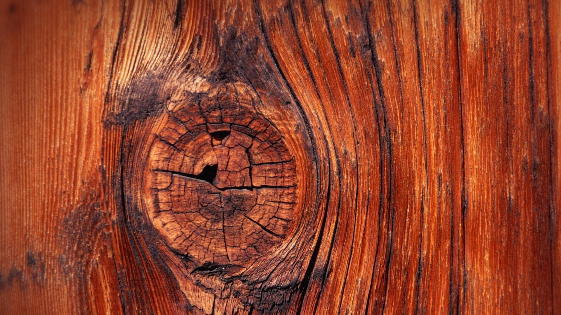 Res: 1920x1080,  4. wood-hd-wallpaper-HD4-600x338