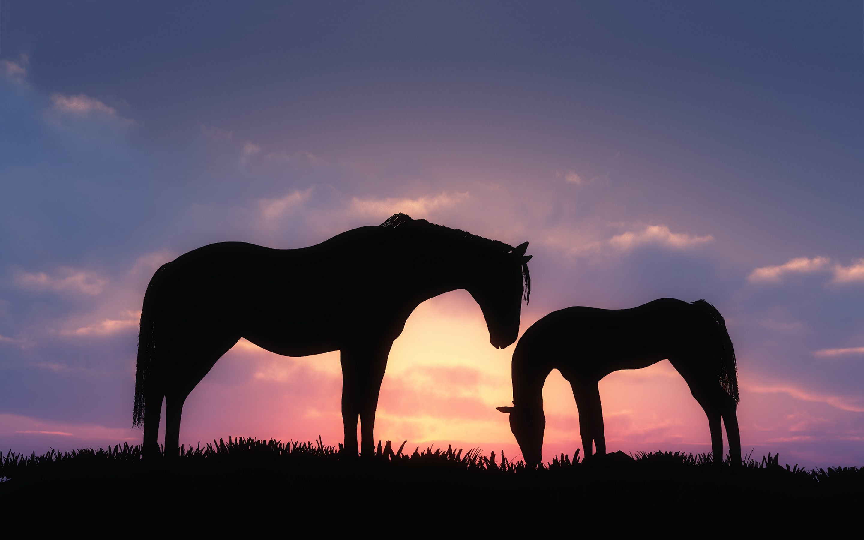 Res: 2880x1800, silhouette of sunset | Horses sunset silhouette Wallpapers Pictures Photos  Images