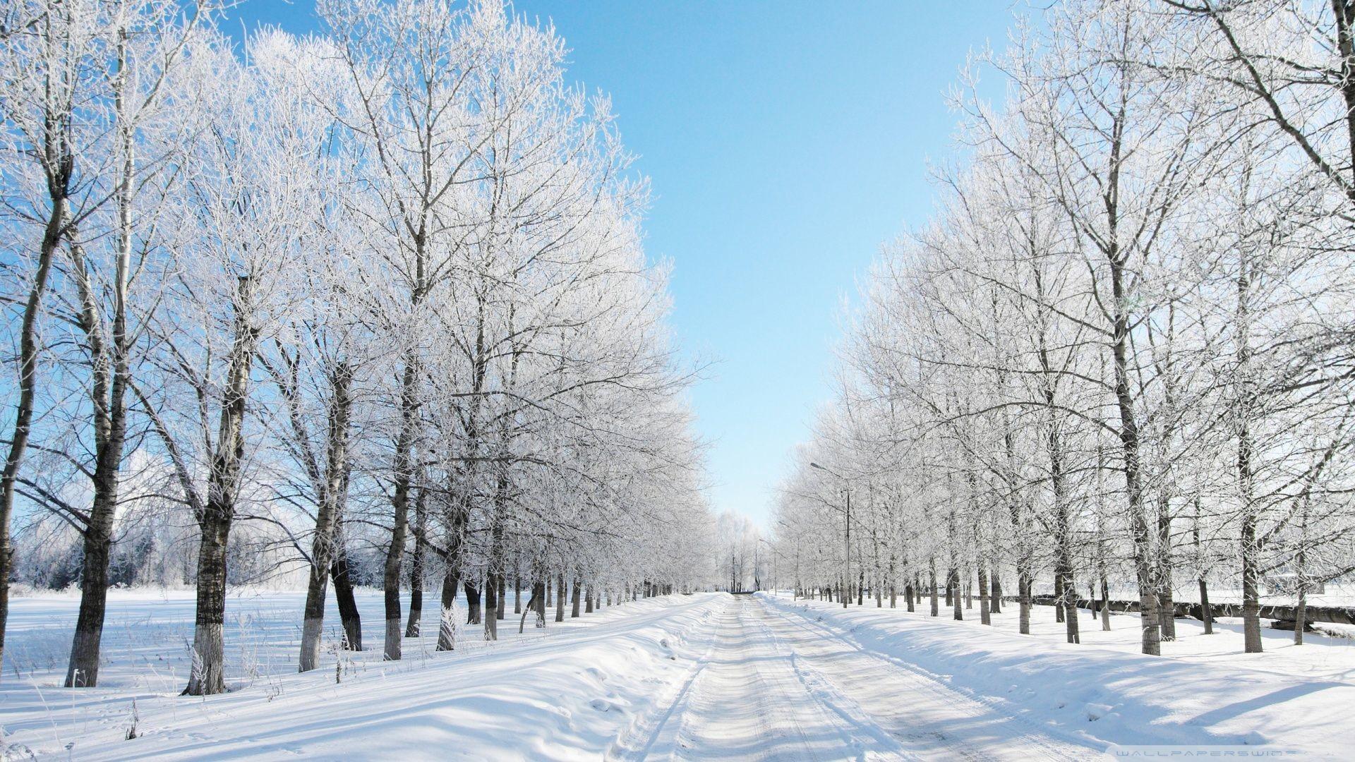 Res: 1920x1080, K Ultra HD Snow Wallpapers HD, Desktop Backgrounds 1920×1200 Snow Picture  Wallpapers (35 Wallpapers) | Adorable Wallpapers