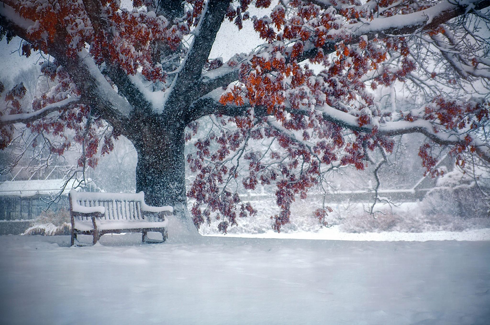 Res: 2048x1358, Snowfall Wallpapers 20 2048 x 1358 340x220