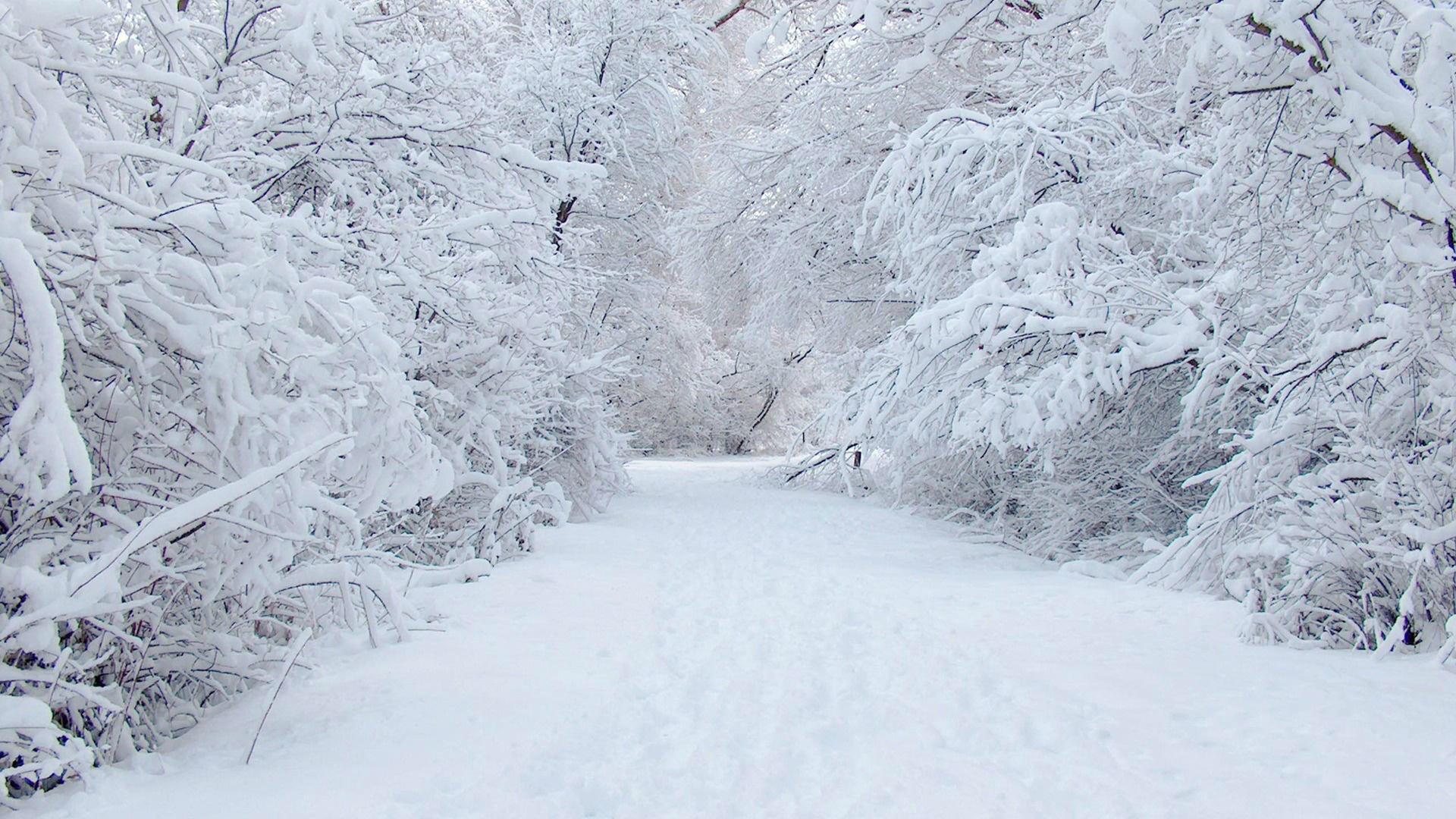 Res: 1920x1080, Snowfall Wallpaper