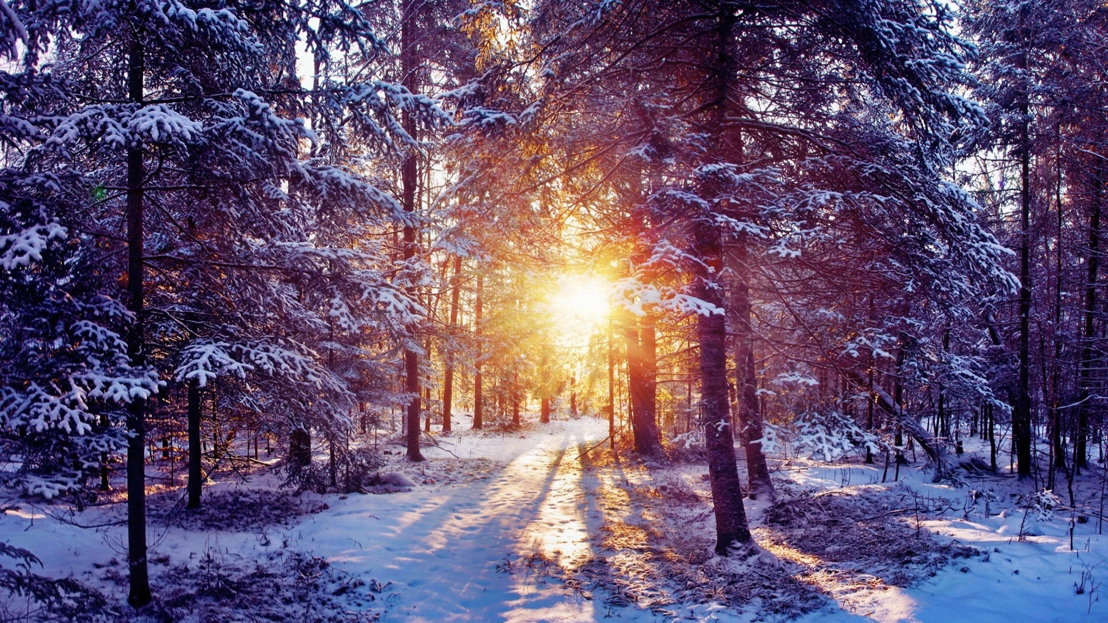 Res: 3840x2160,  4K Snow Desktop Wallpaper Free