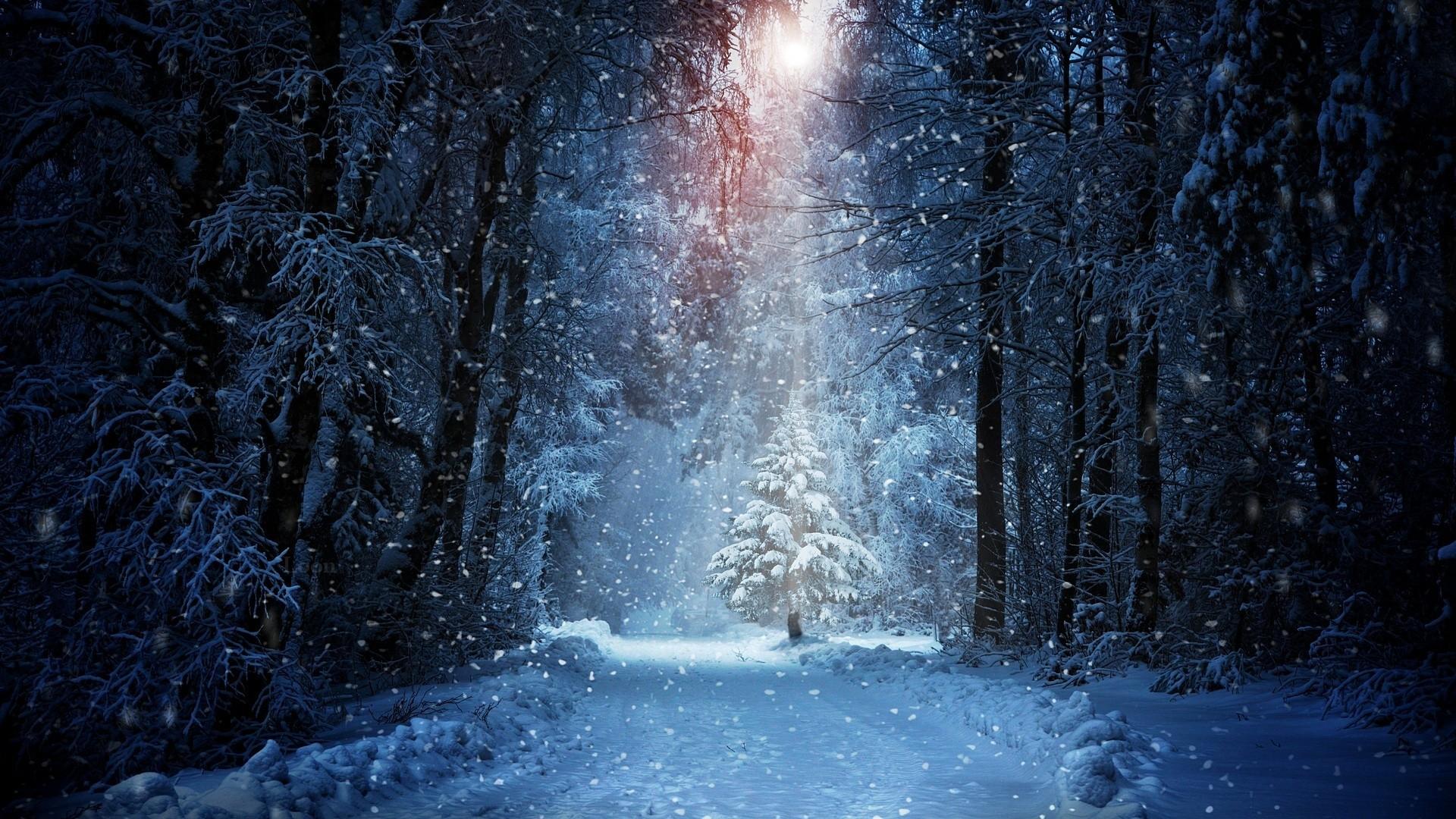 Res: 1920x1080, Snowfall Wallpapers 26 1920 x 1080 340x220
