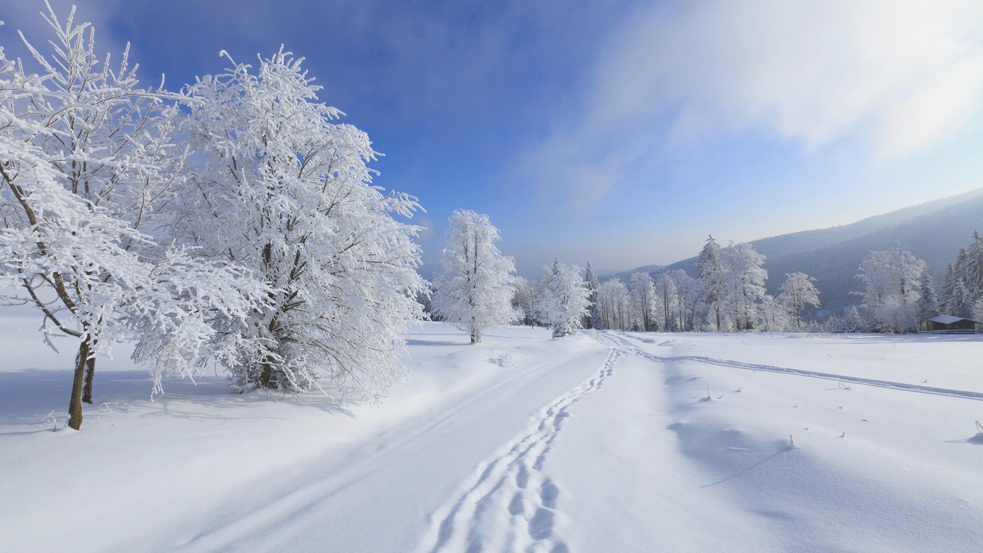 Res: 1920x1080, Snowfall Wallpaper Pict Best