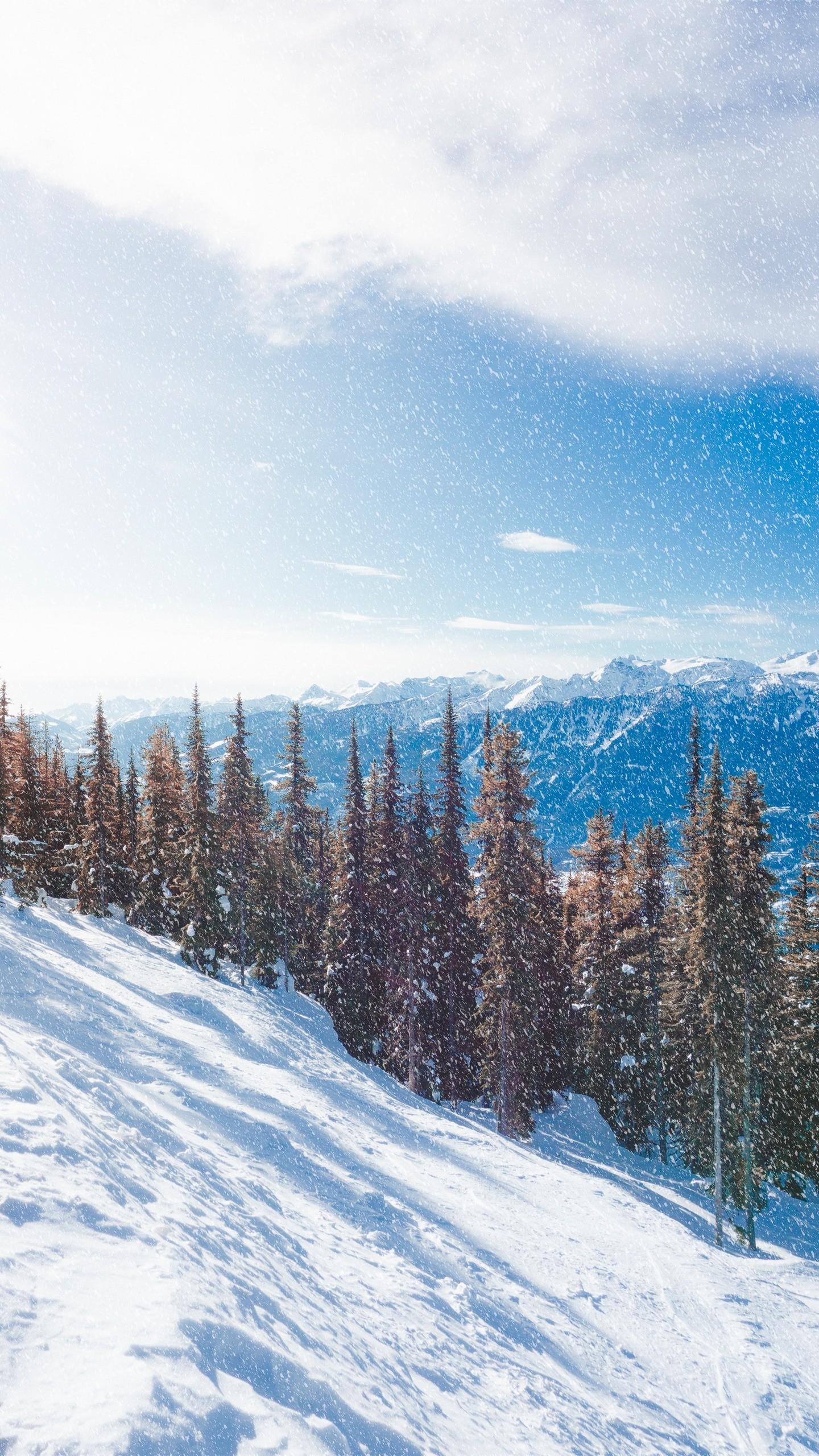 Res: 1440x2560,  Wallpaper snow, slope, mountains, winter, trees, snowfall