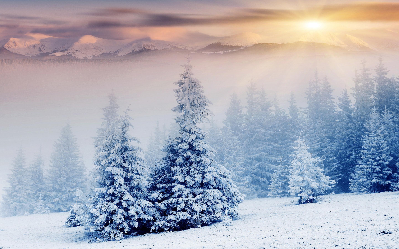 Res: 2880x1800, Stunning Snowfall Wallpaper