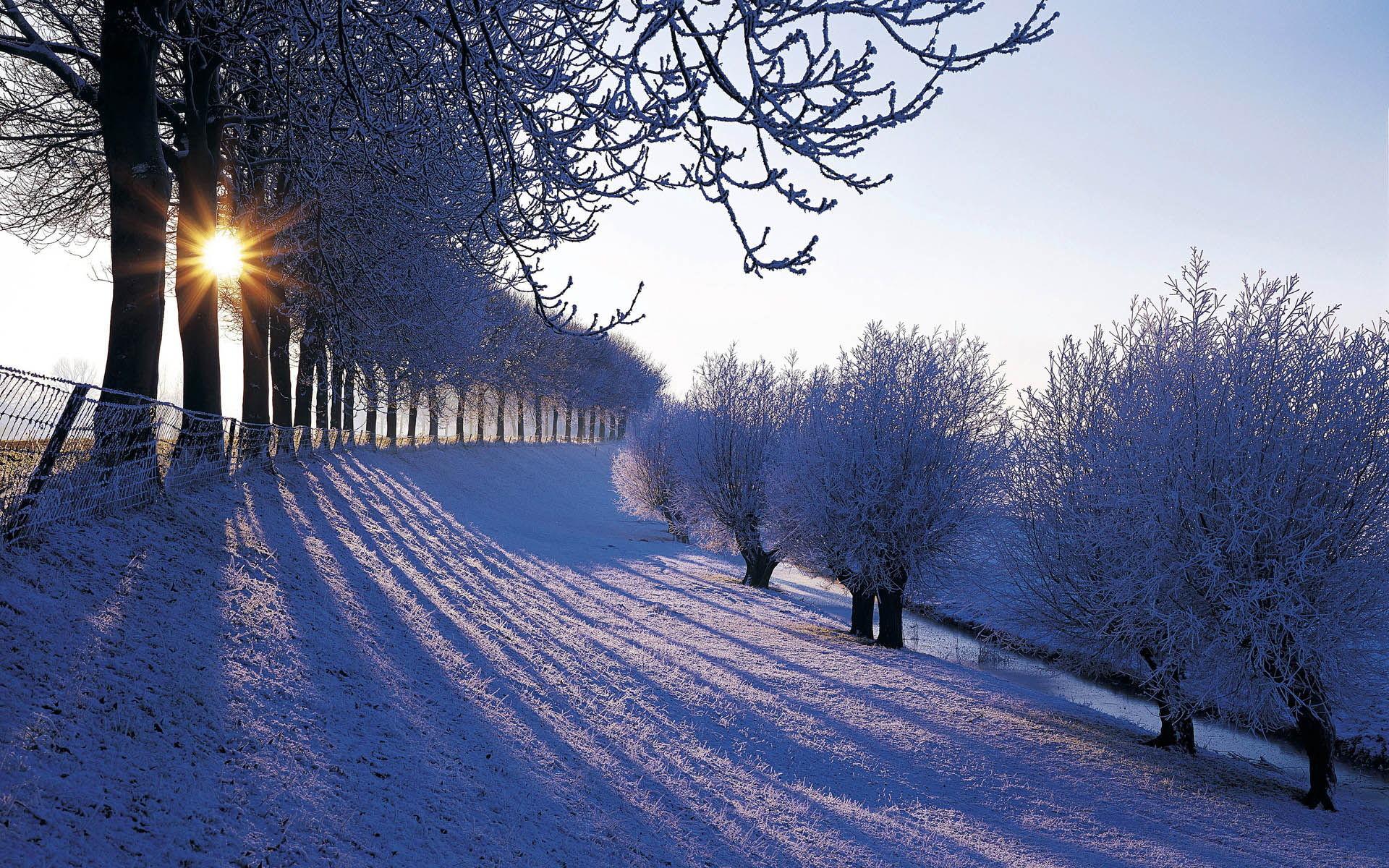 Res: 1920x1200, Snowfall Wallpaper Free Download