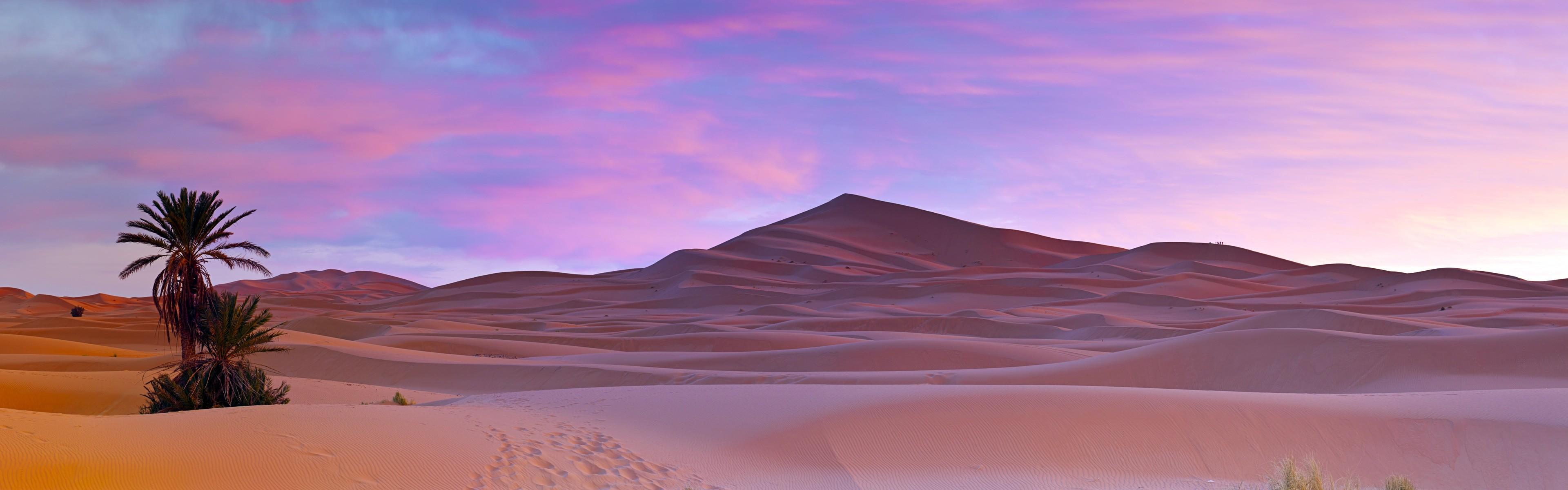 Res: 3840x1200, Palm trees Sahara Desert Morocco Wallpapers