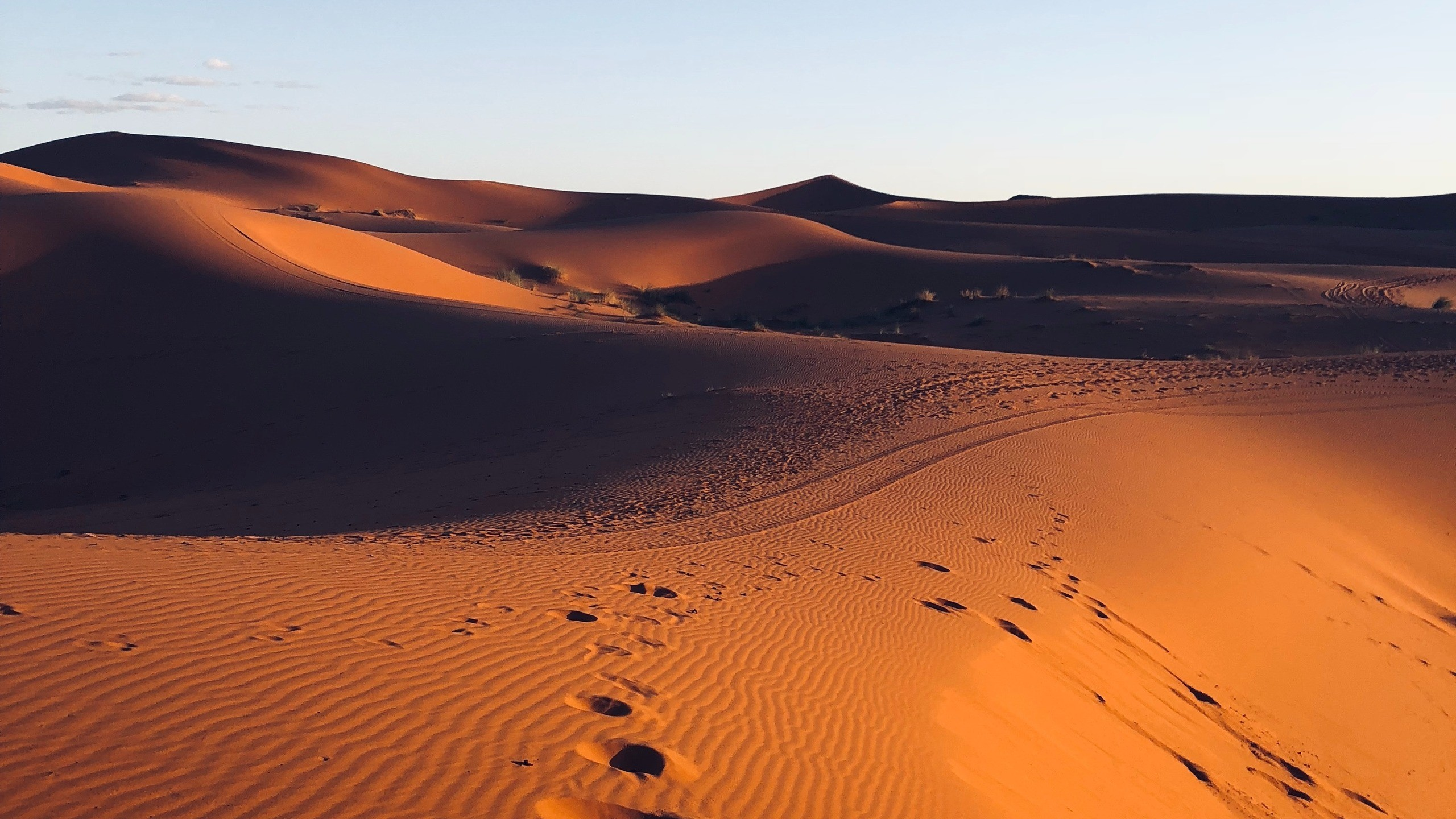 Res: 2560x1440,  Wallpaper desert, sand, footprint, morocco