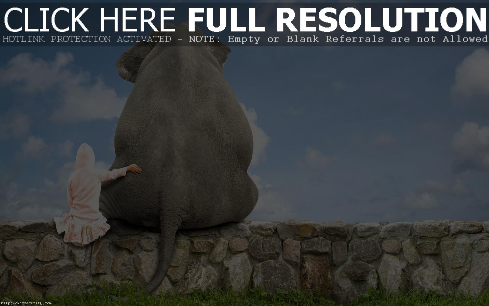 Res: 1920x1200, Stunning Elephant Wallpaper 45306