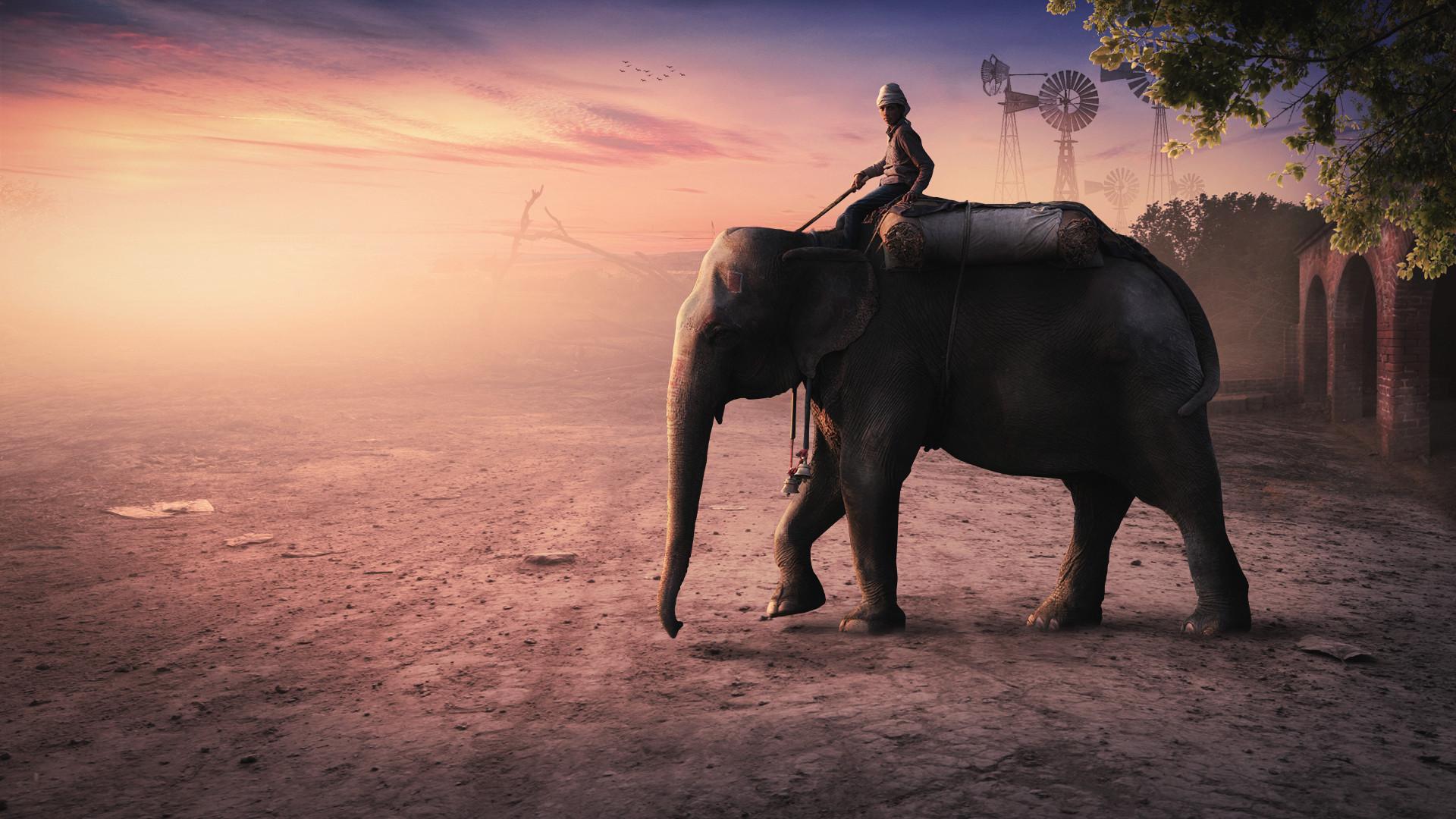 Res: 1920x1080, Elephant Man