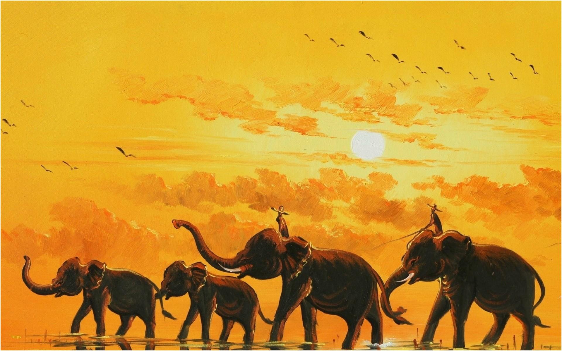 Res: 1920x1200, ... Elephant Wallpapers Elegant Artsy Desktop Wallpapers 79 Background  Pictures ...