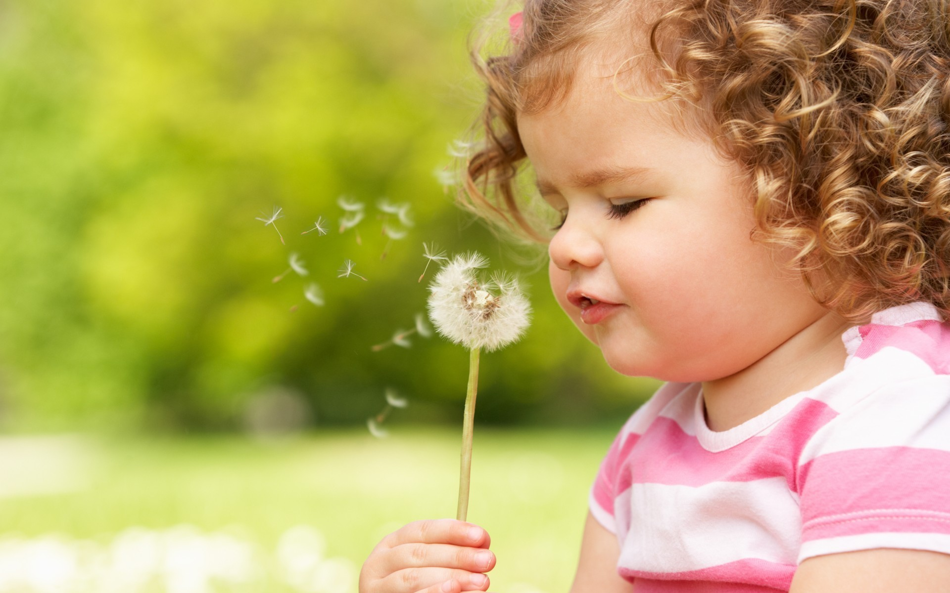 Res: 1920x1200, A Curly Child Blowing a Dandelion