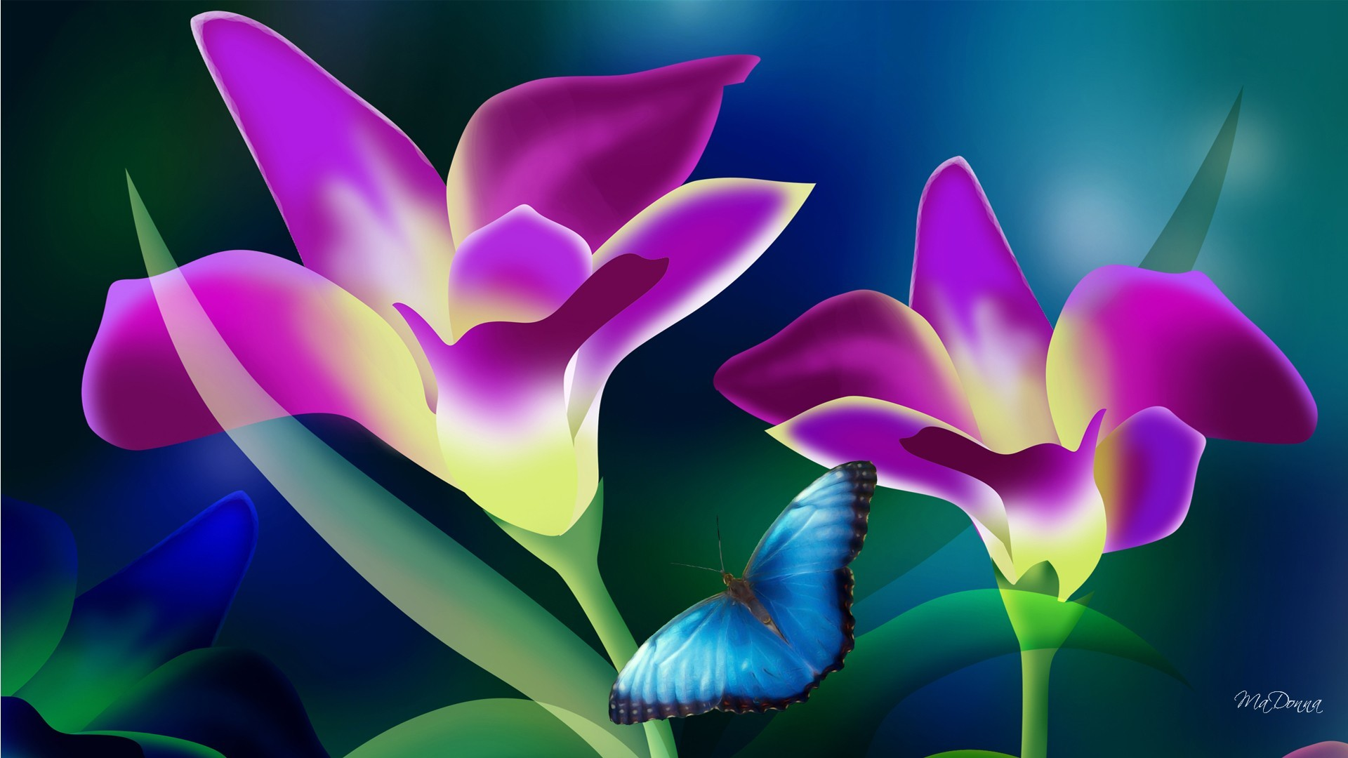 Res: 1920x1080, ... Wallpapers; Full HD Pictures Tropical Flowers  px