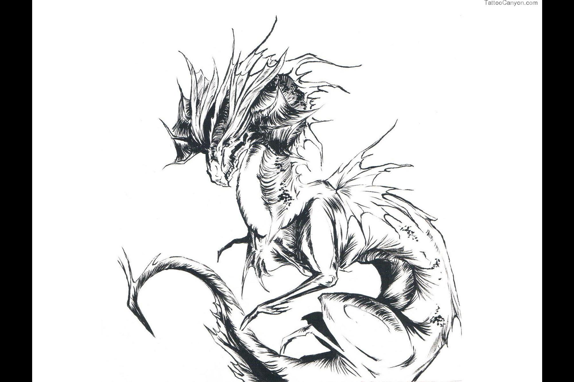 Res: 2000x1333, 2568 Free Designs Skinny Evil Dragon Tattoo Wallpaper Tattoo Design