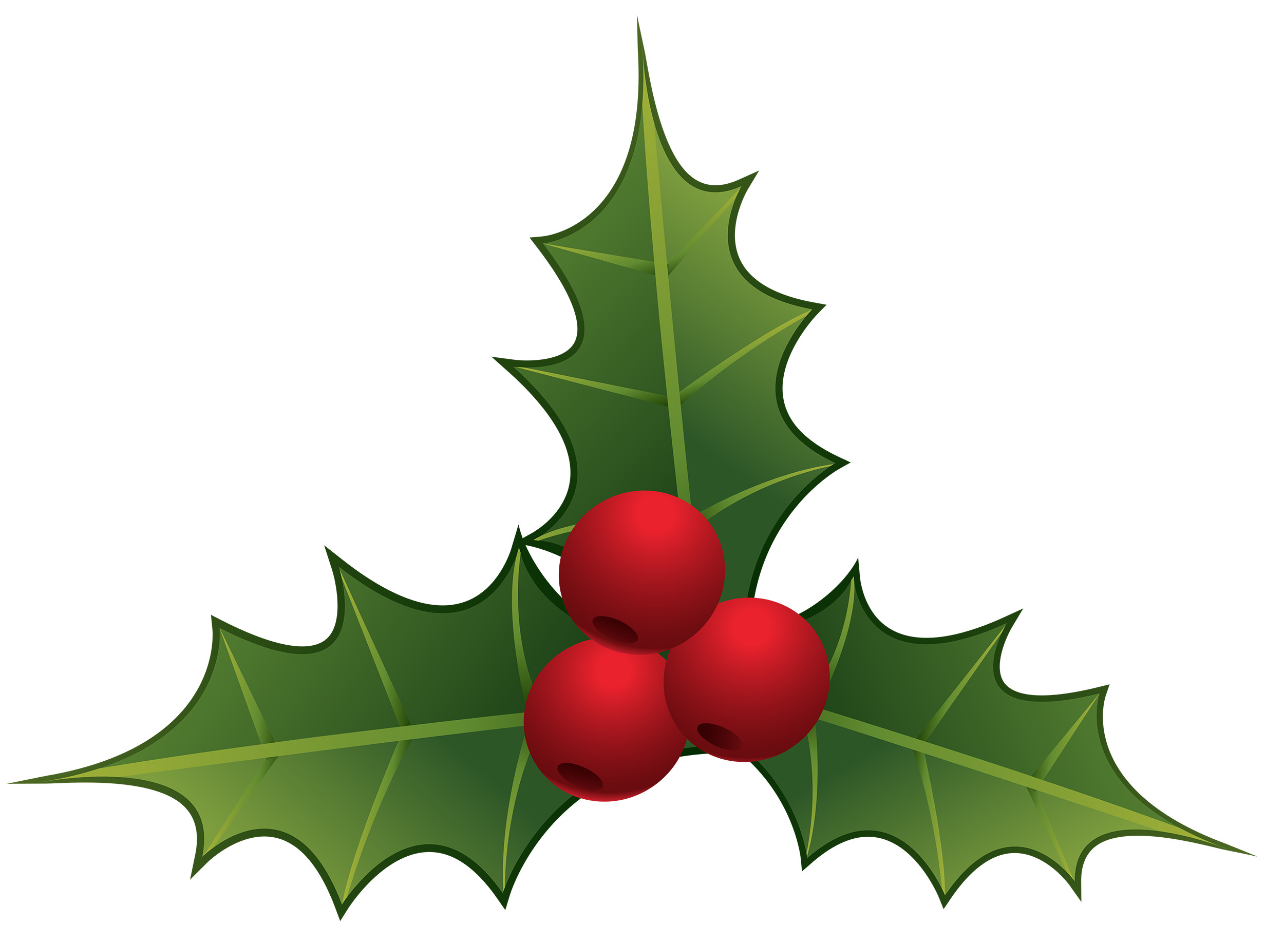 Res: 2500x1839, How To Draw A Mistletoe Cliparts - #22129 - Free Clip Art Images .