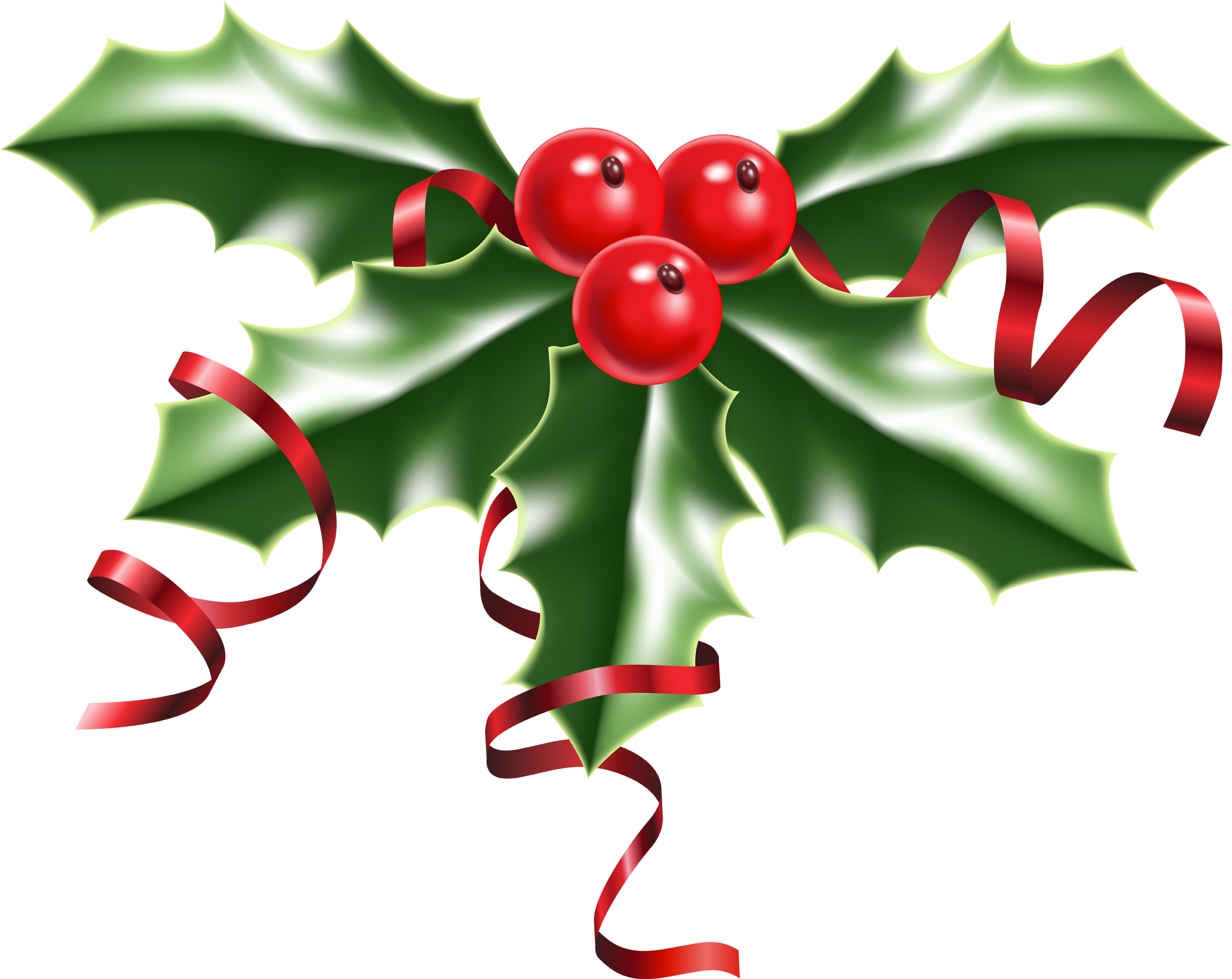 Res: 2400x1907, Transparent holly jpeg. Clip black and