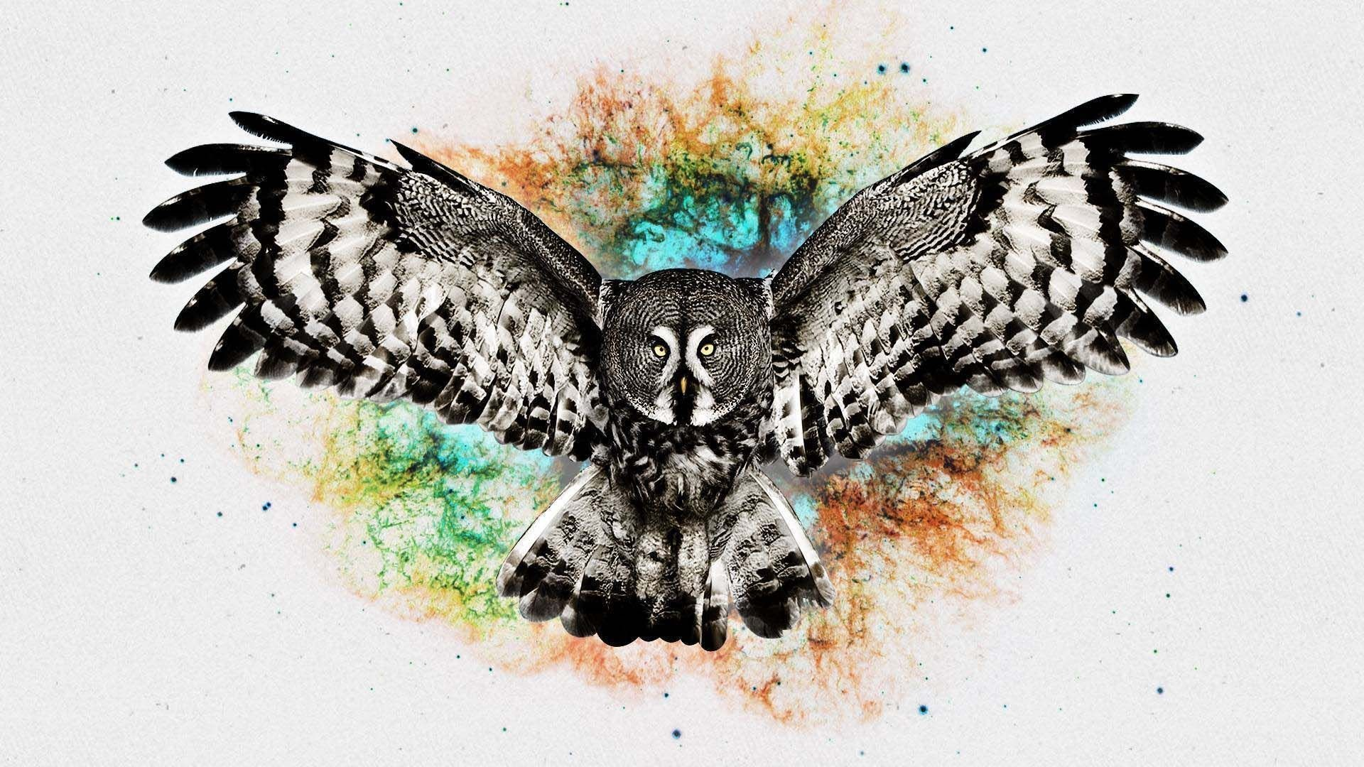 Res: 1920x1080, 3d-black-and-white-owl #wallpapers