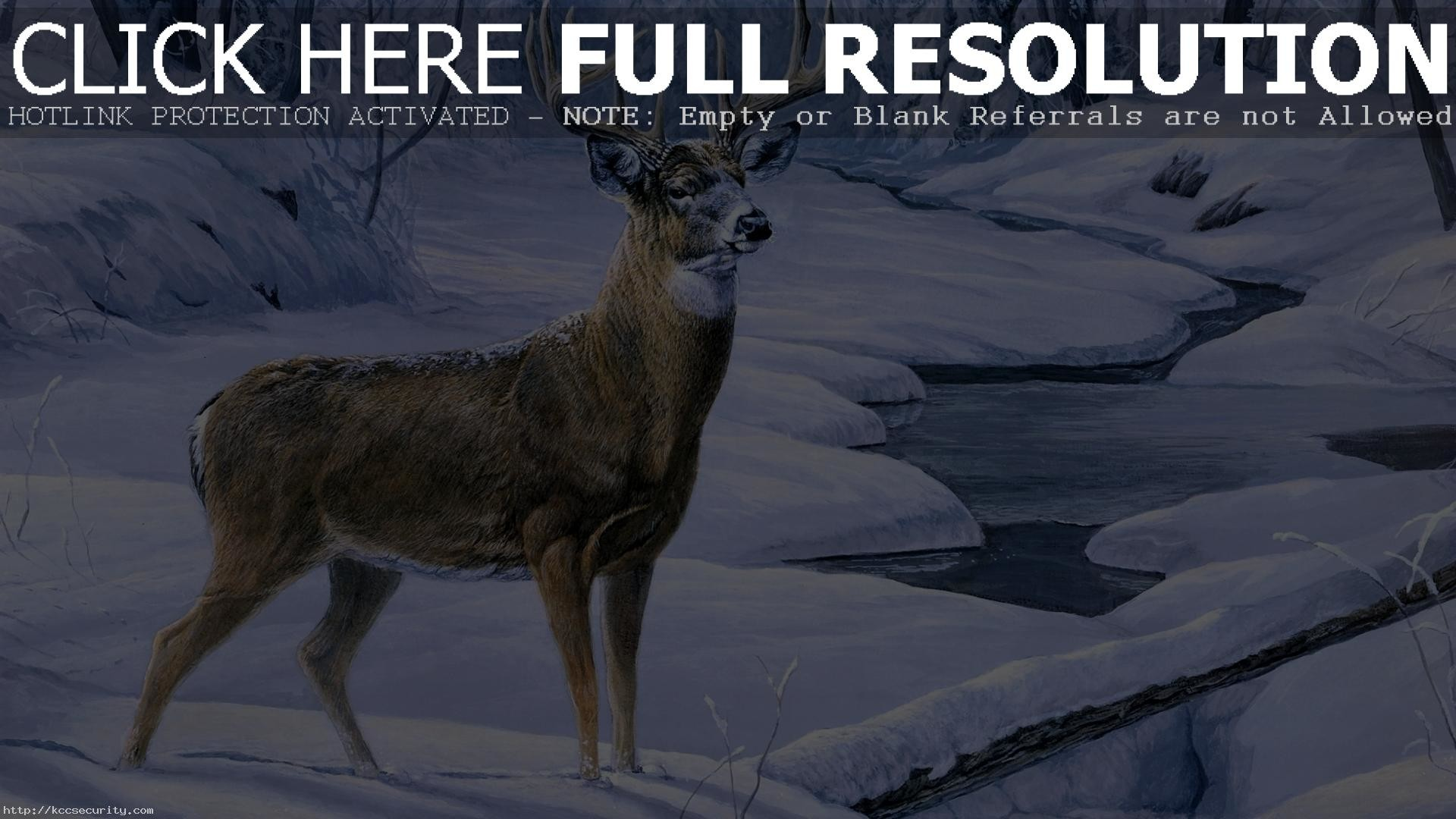 Res: 1920x1080, Deer Desktop Wallpaper 16668