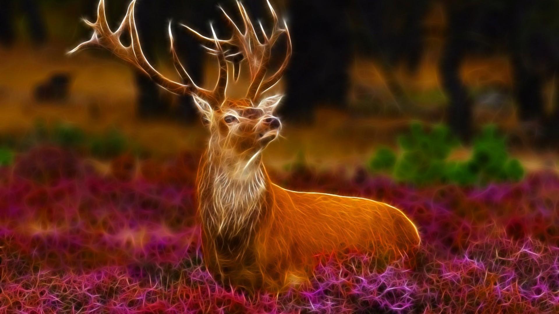 Res: 1920x1080, deer ...