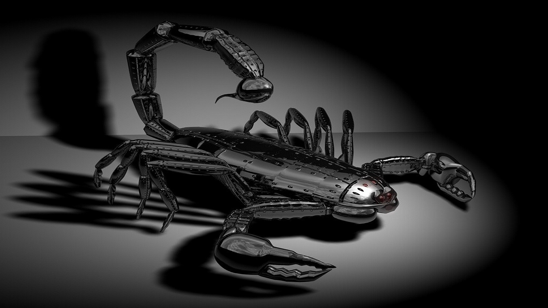 Res: 1920x1080, HD Scorpion Images.