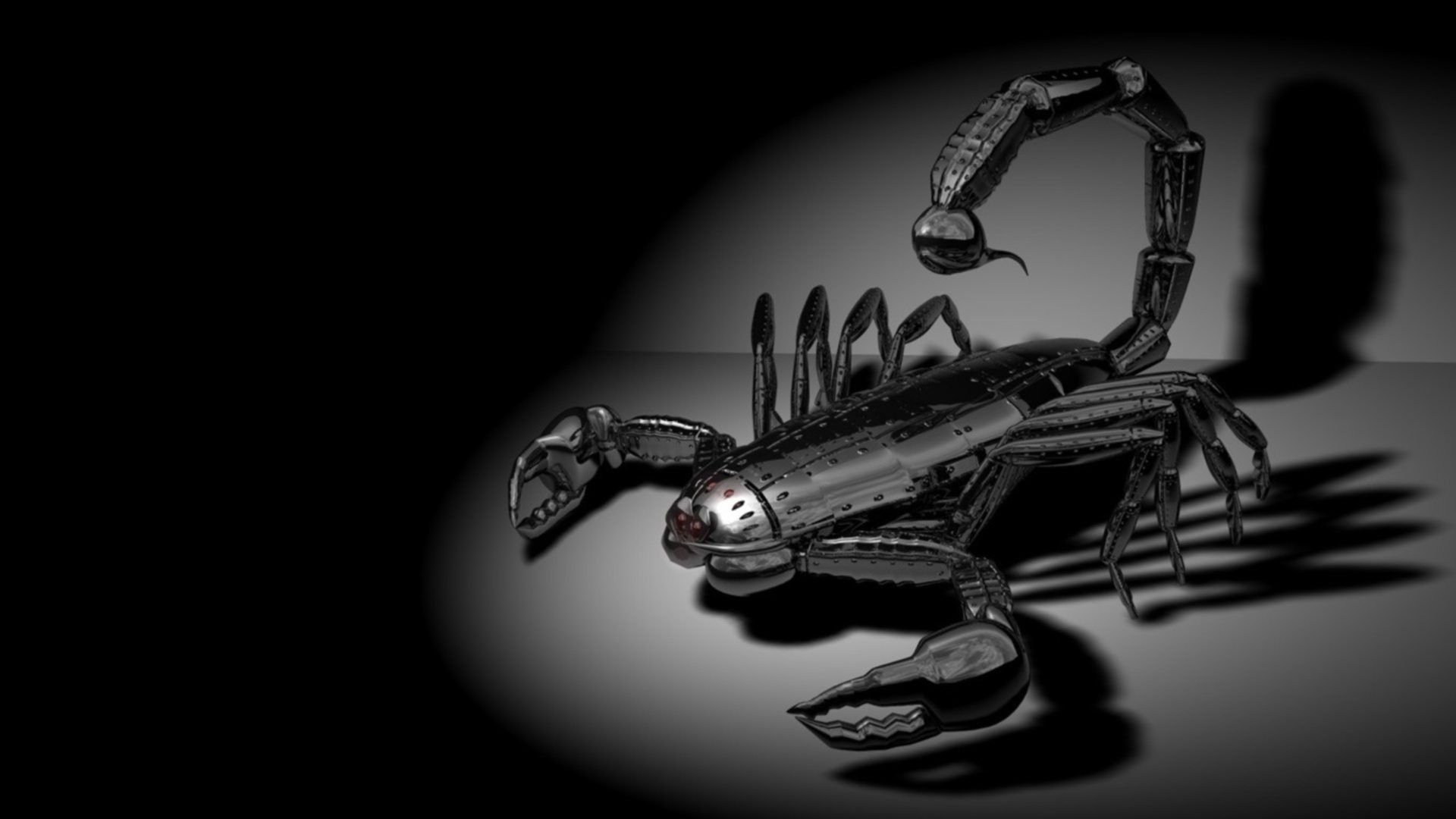Res: 1920x1080, Black Scorpion HD Wallpaper From Gallsource.com