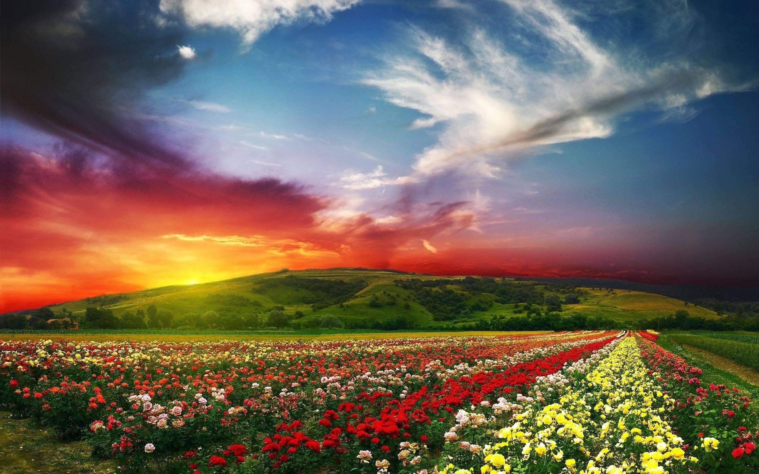Res: 2560x1600, Wallpaper.wiki Best Nature Wallpapers Hd Free Download PIC .