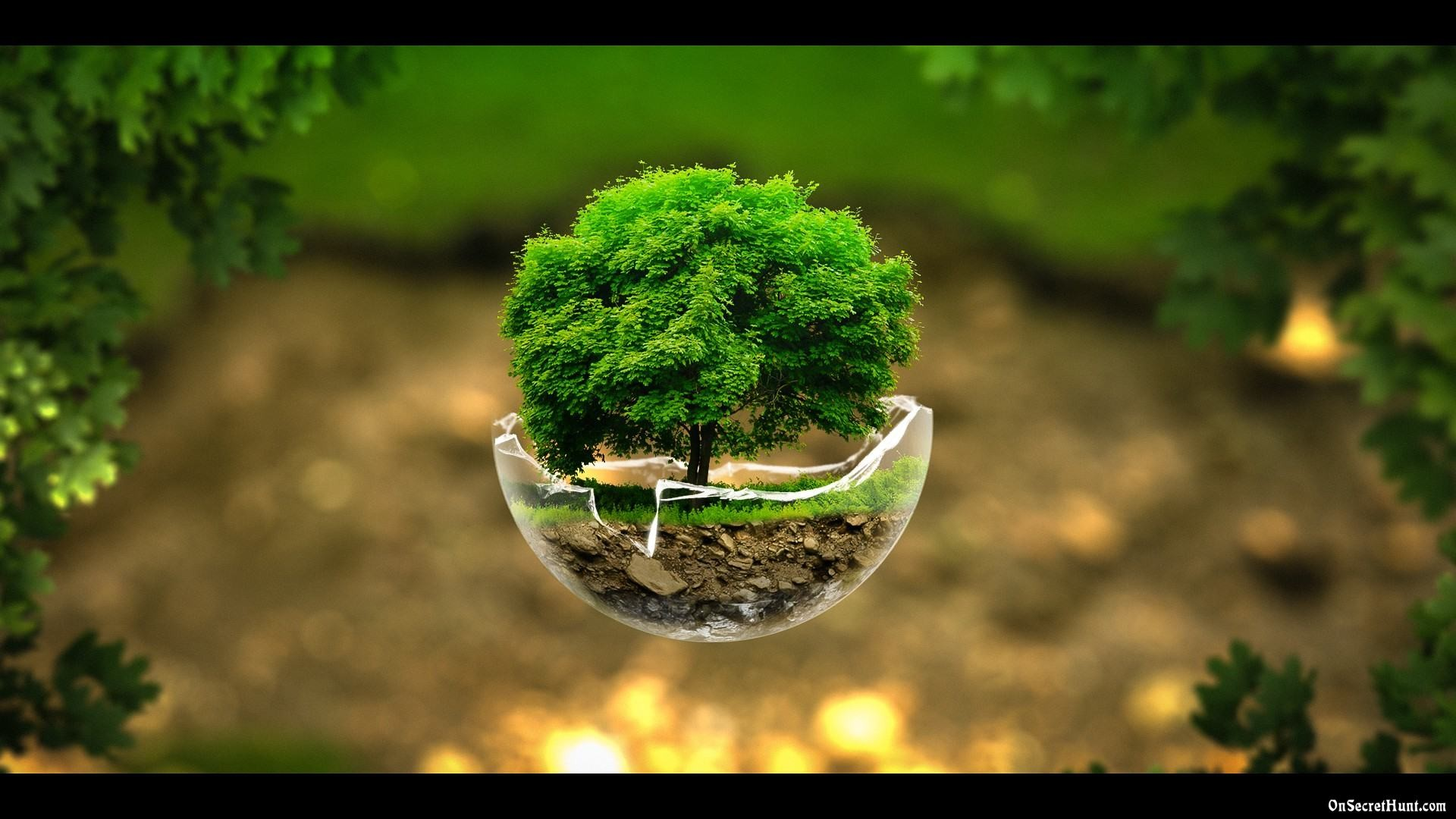 Res: 1920x1080, 78 Best ideas about Hd Nature Wallpapers on Pinterest   Wallpaper