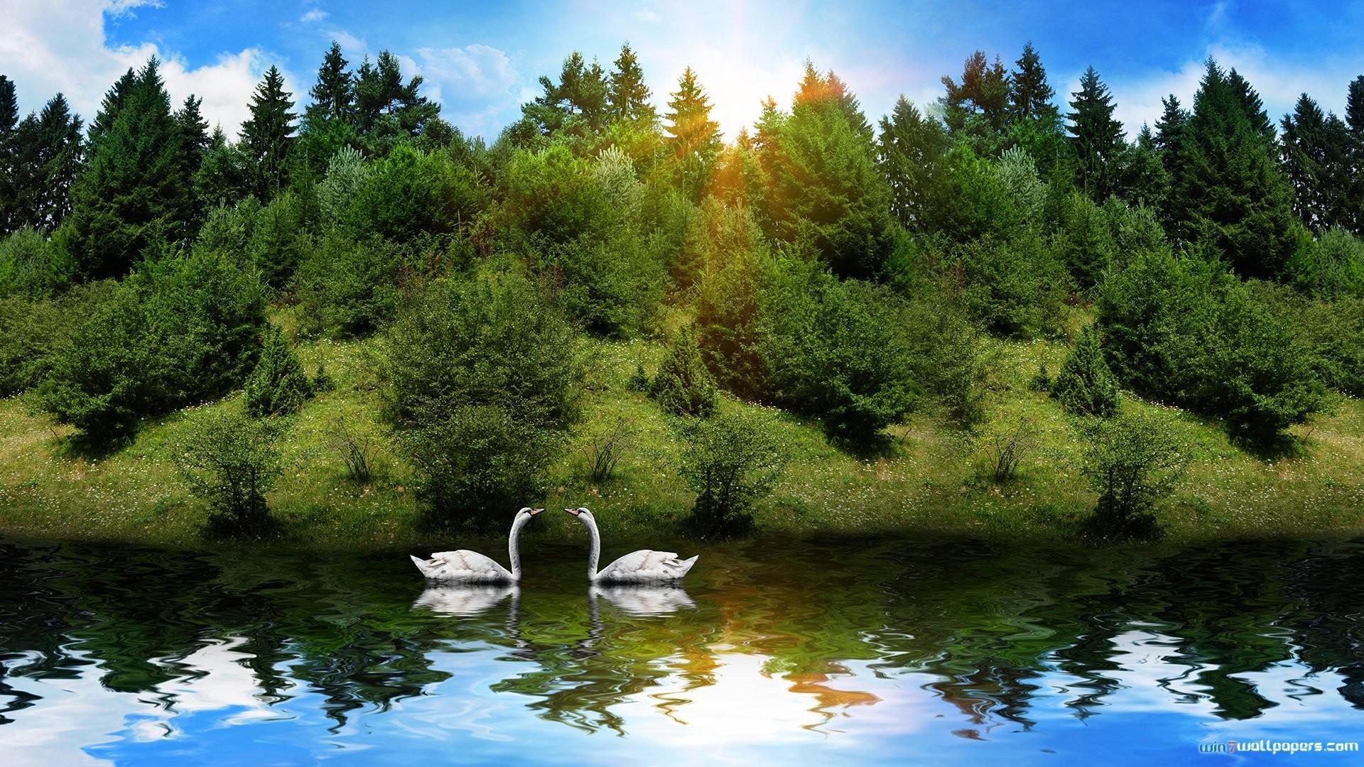 Res: 1920x1080, Fun Nature Wallpaper HD download.