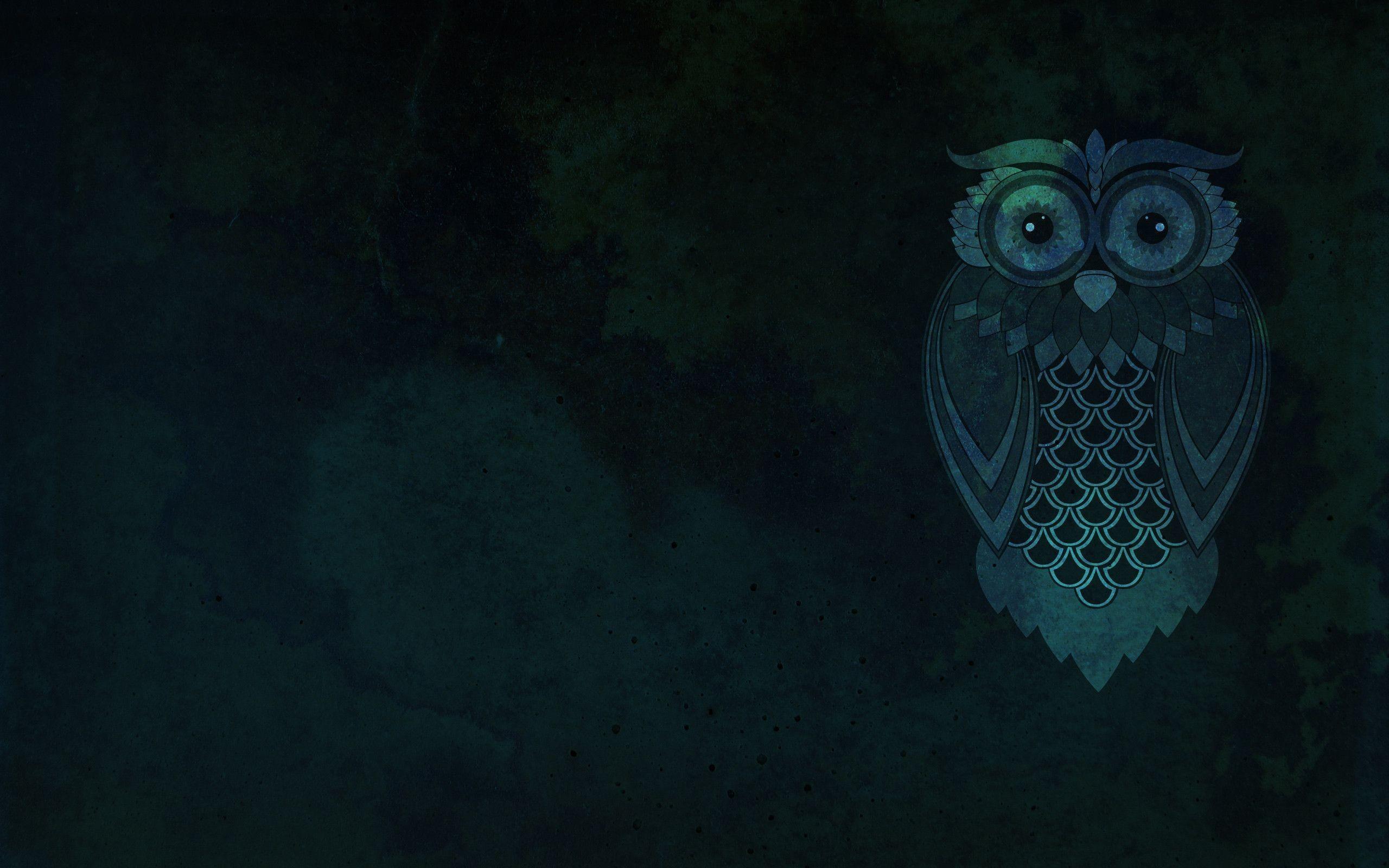 Res: 2560x1600, Drawn owl desktop wallpaper #5