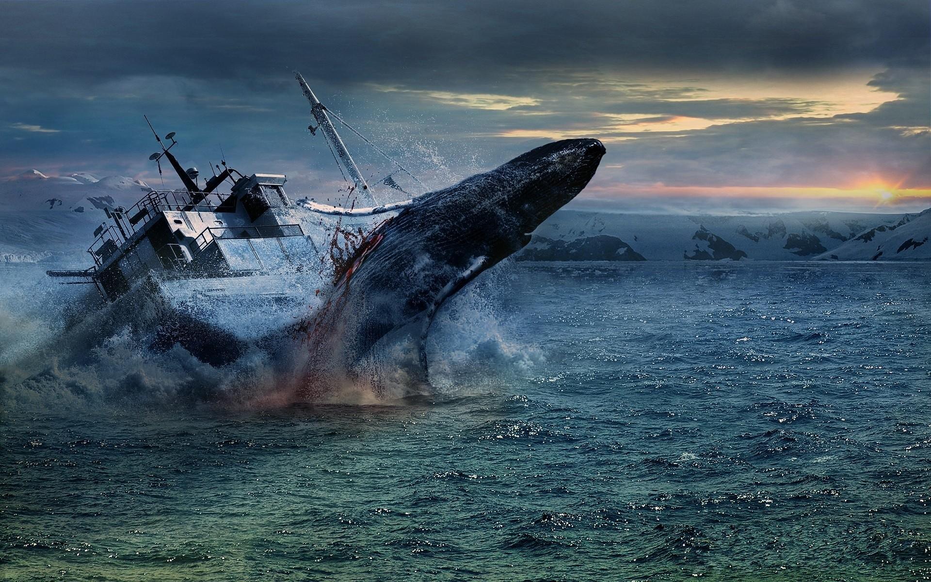 Res: 1920x1200, Shipwreck Wallpaper